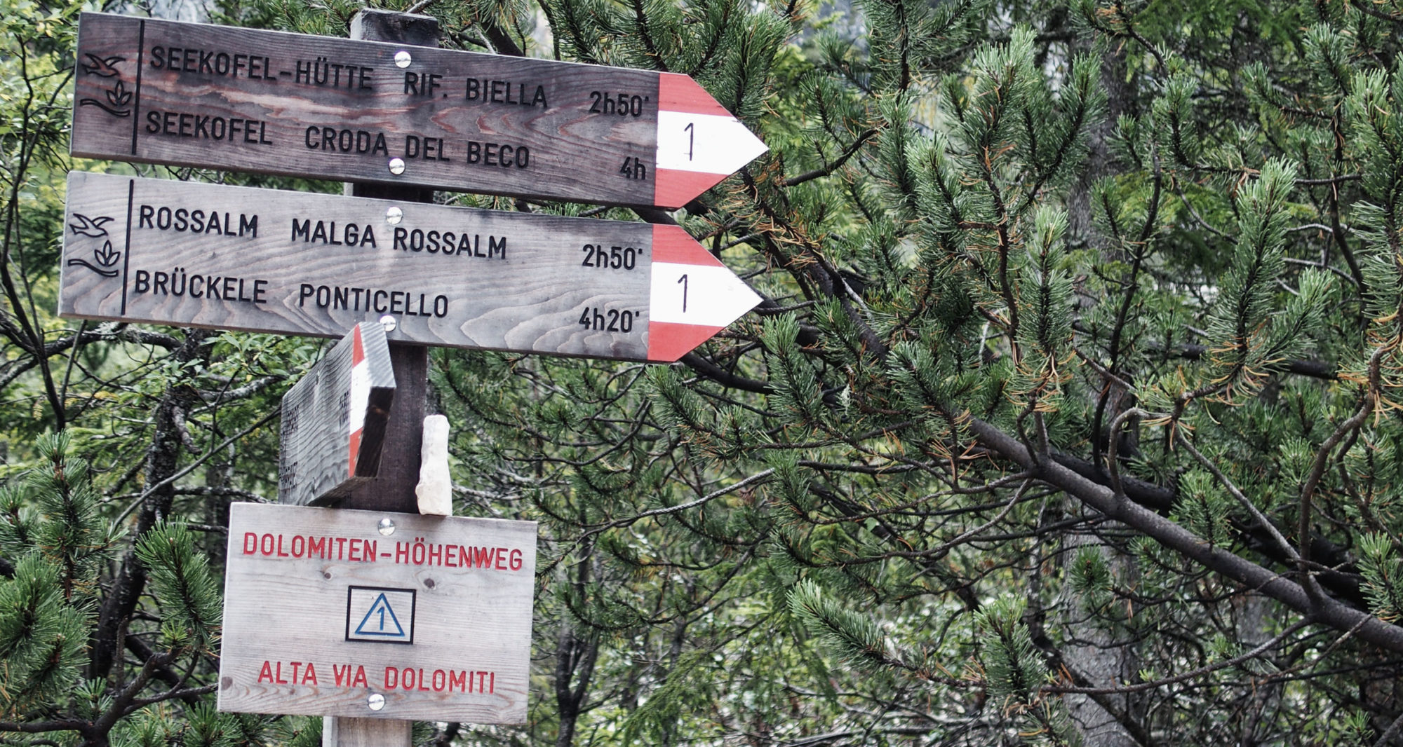 Wegweiser zum Seekofel und Dolomiten Höhenweg