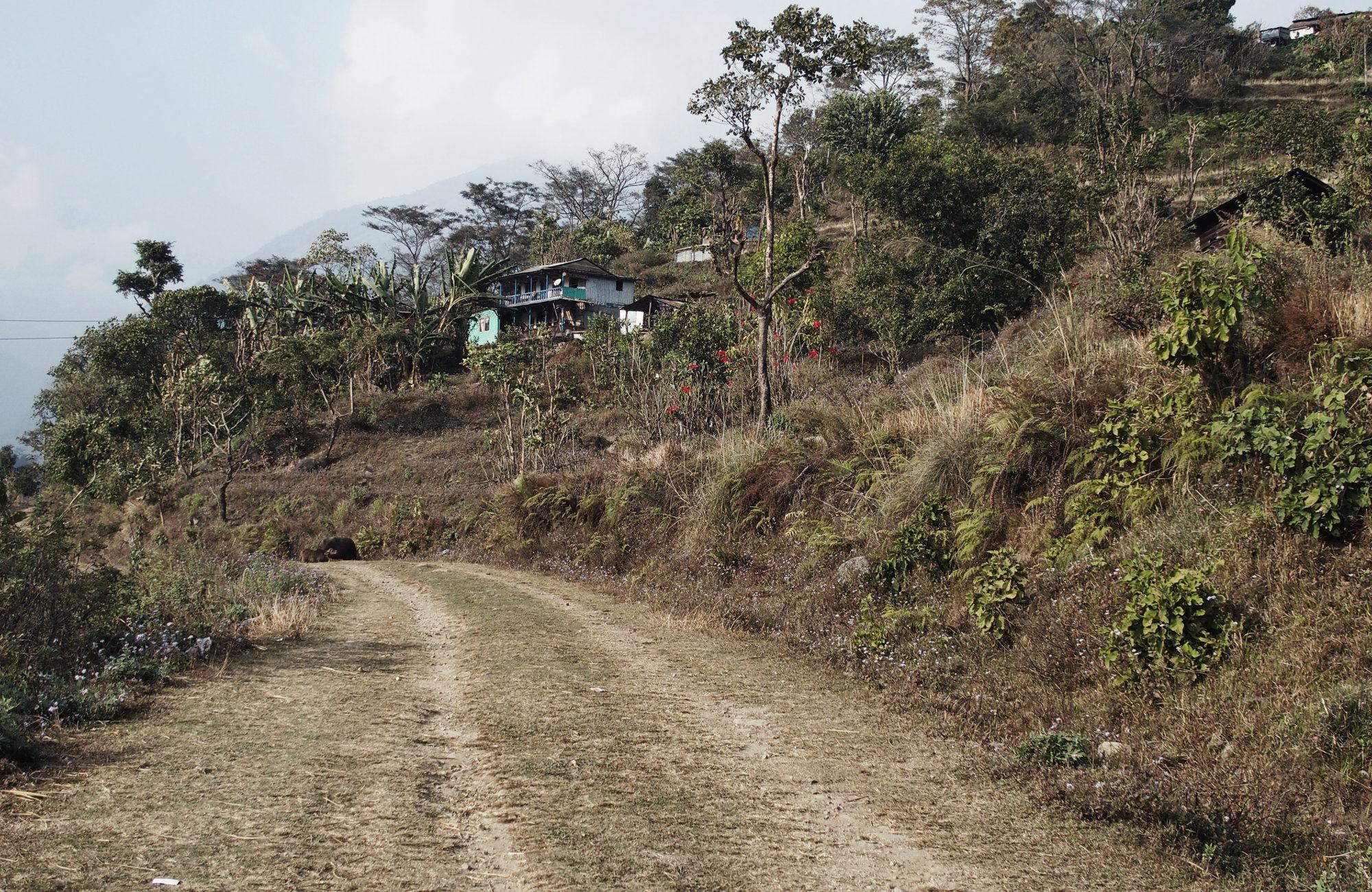 Felder am Annapurna Circuit