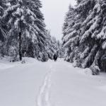 Wandern auf den Schneeberg im Tiefschnee