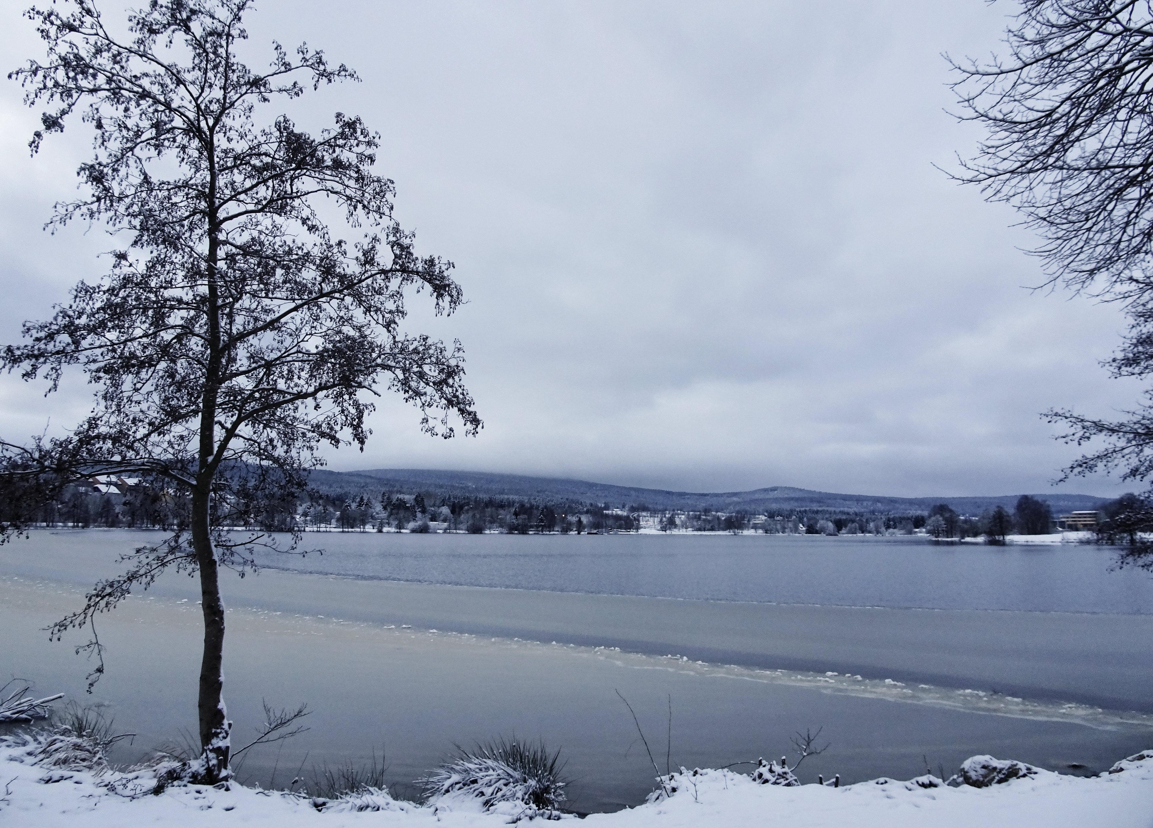Weißenstädter See am frühen Wintermorgen