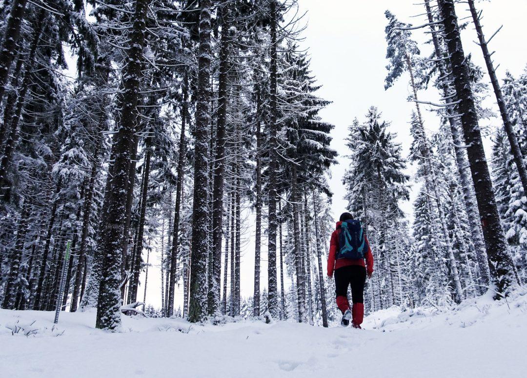 Wandern durch den verschneiten Wald im Fichtelgebirge