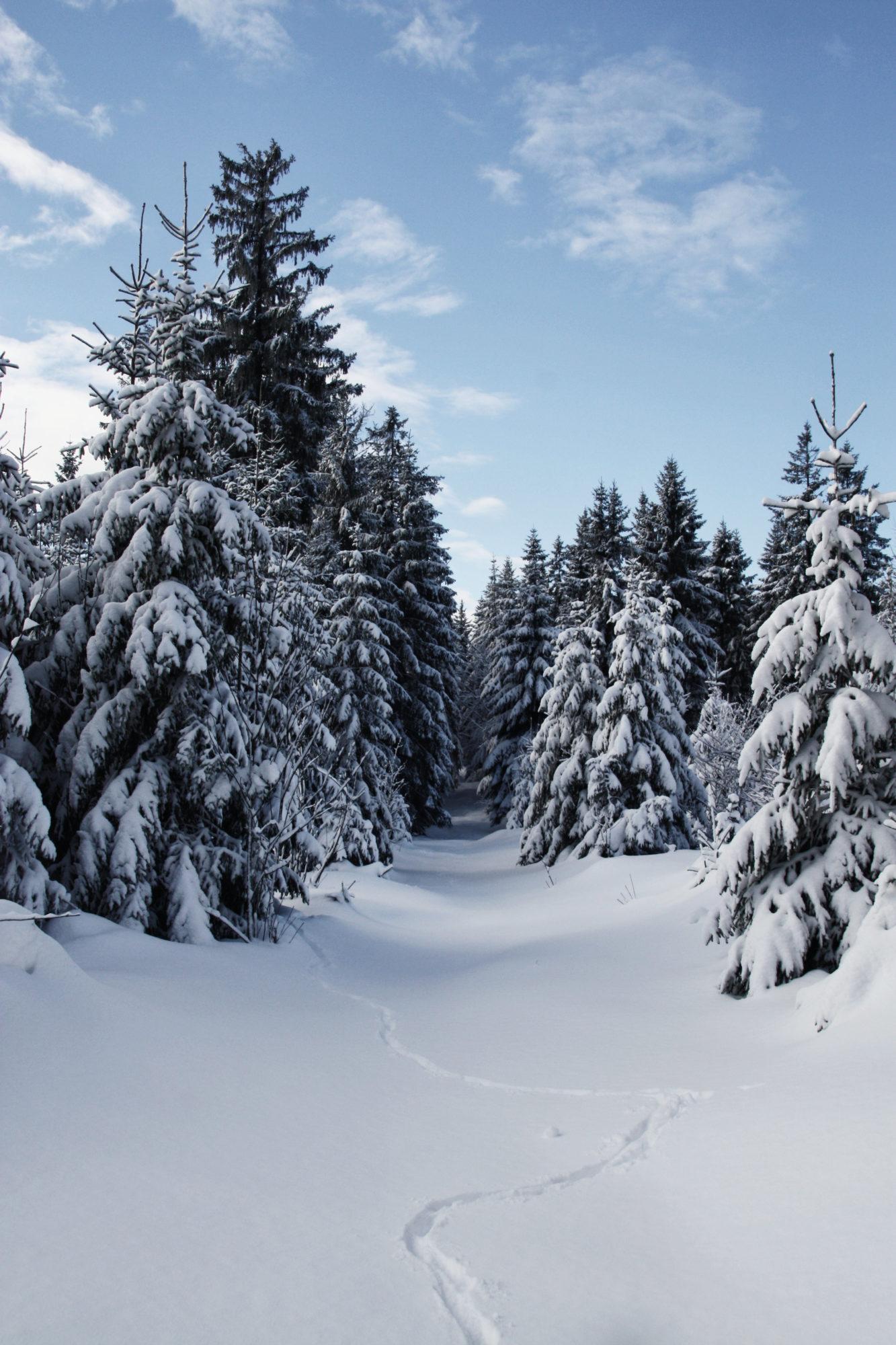 Winter Wanderweg im Fichtelgebirge Traumhaft