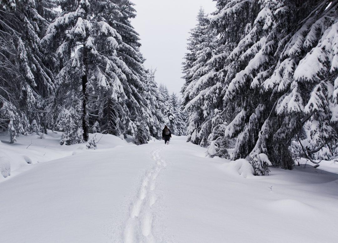 Wanderung auf den Schneeberg im Tiefschnee