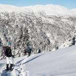 Schneeschuhwandern Abwärts