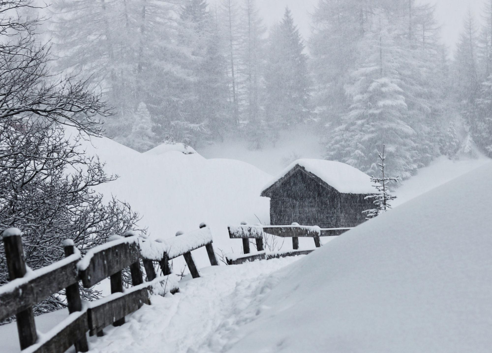 Schneefall Schneeschuhtour Hütte Pfad
