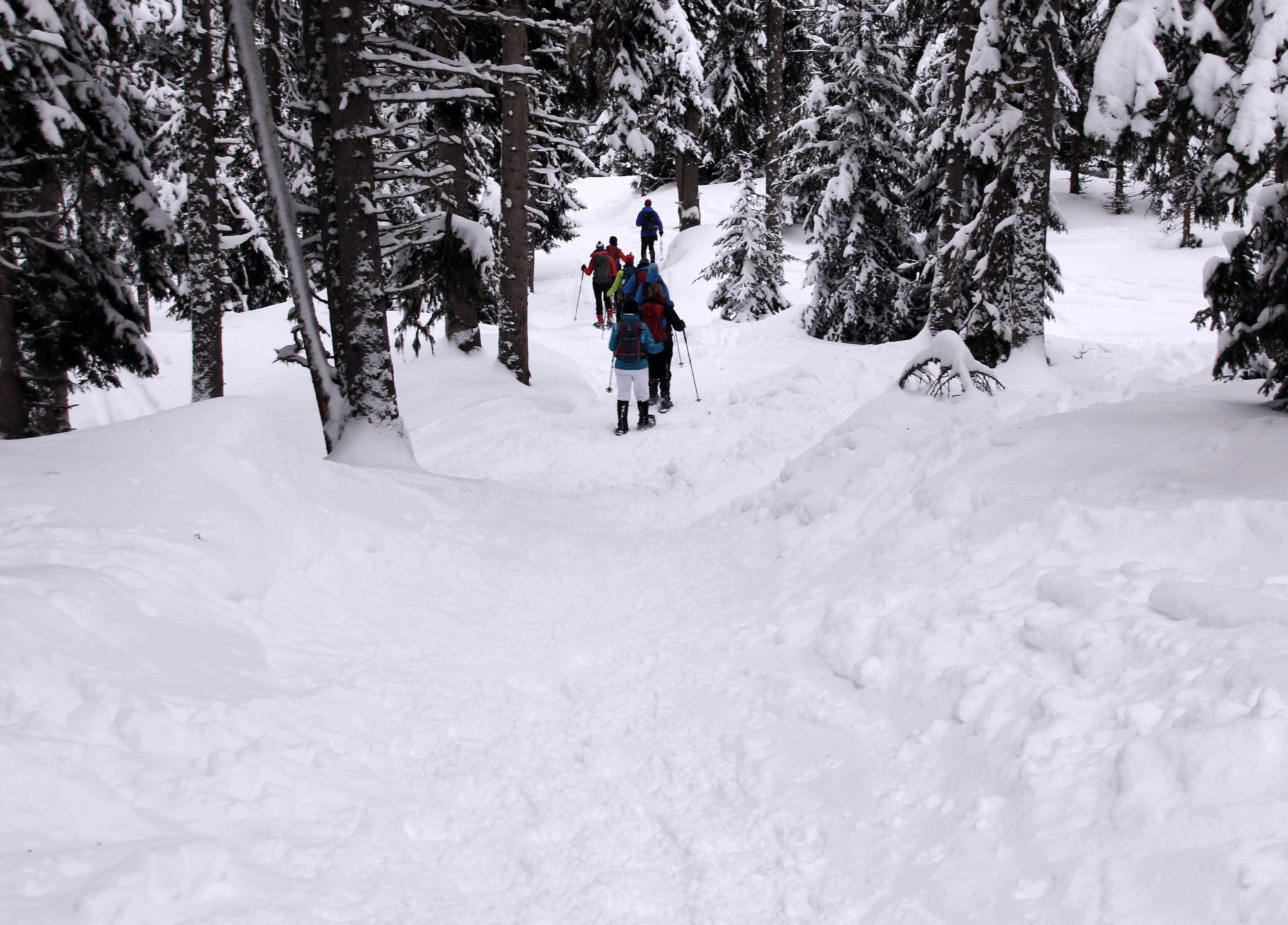 Schneeschuhwandern abwärts Gruppe
