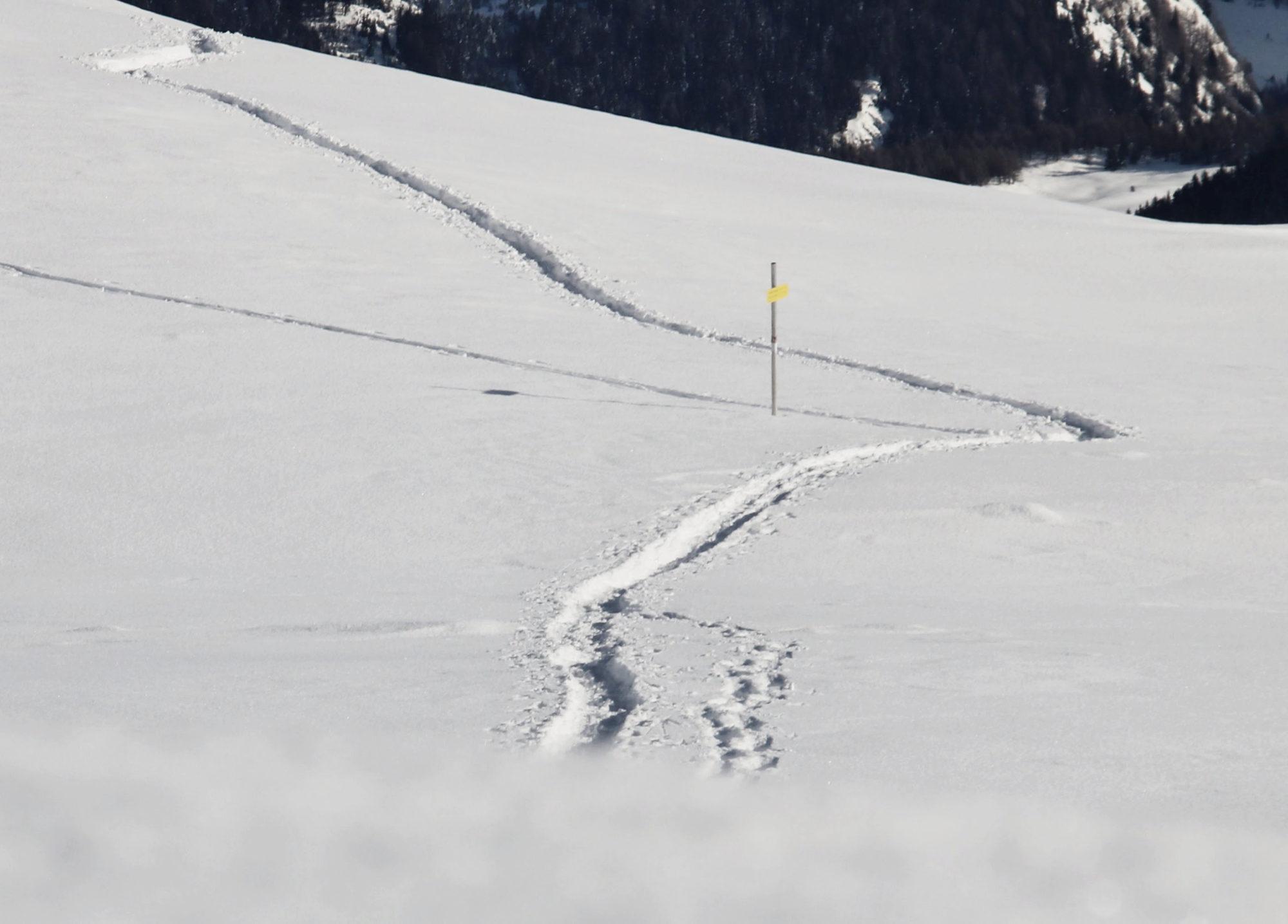 Tiefschneespuren beim Schneeschuhwandern