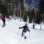 Schneeschuhwanderungen Runterrennen durch den Tiefschnee