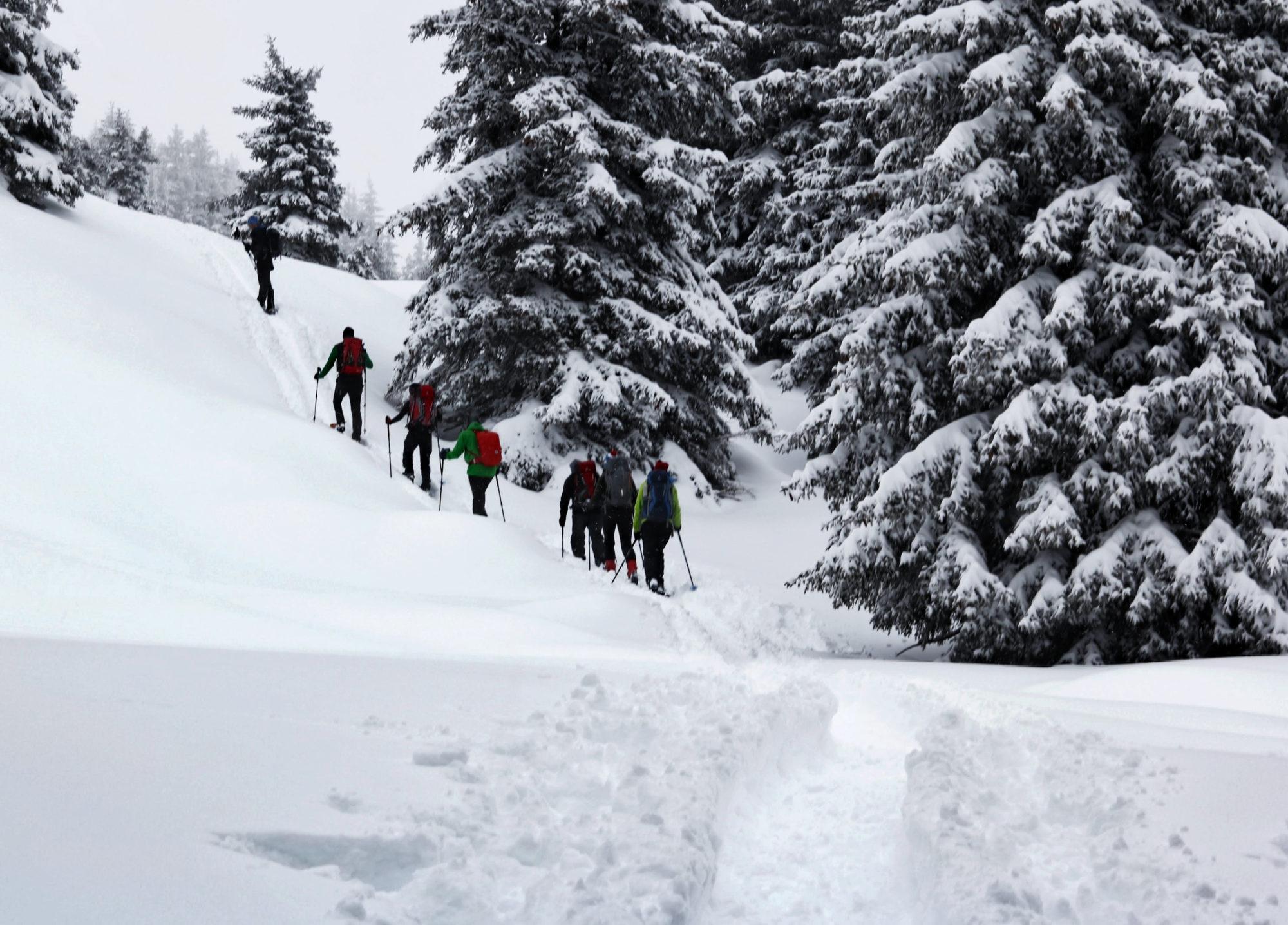 Schneeschuhtour Sattelbergspitze Brennerberge