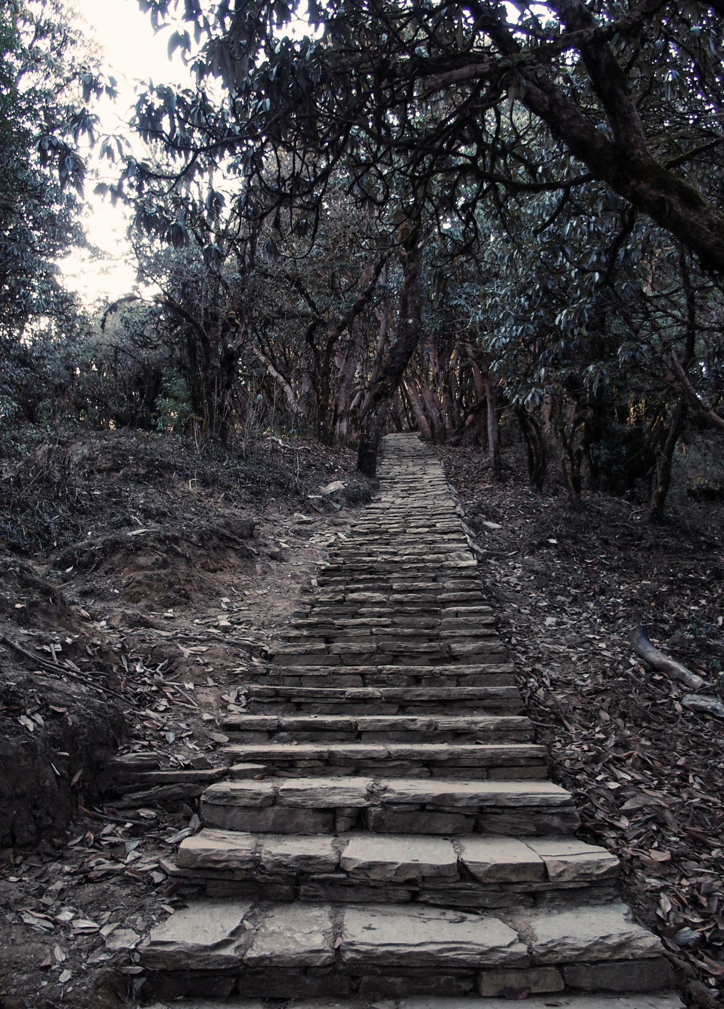 Treppenstufen auf dem Annapurna Circuit