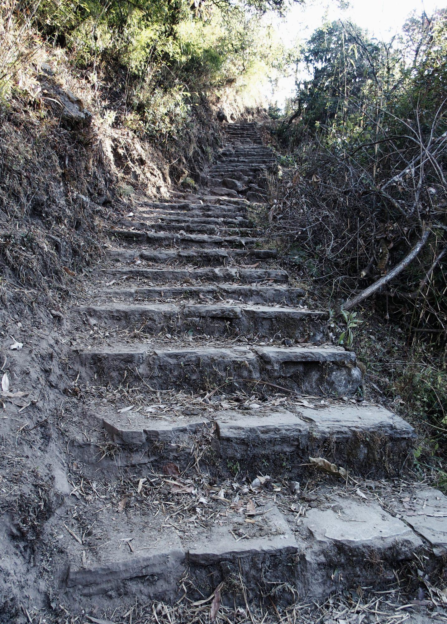 Und es geht wieder aufwärts! Annapurna Base Camp Trail