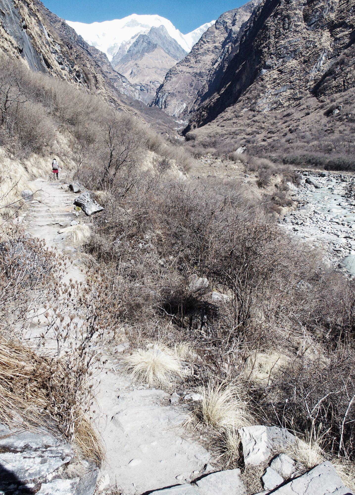 Trail Annapurna Base Camp