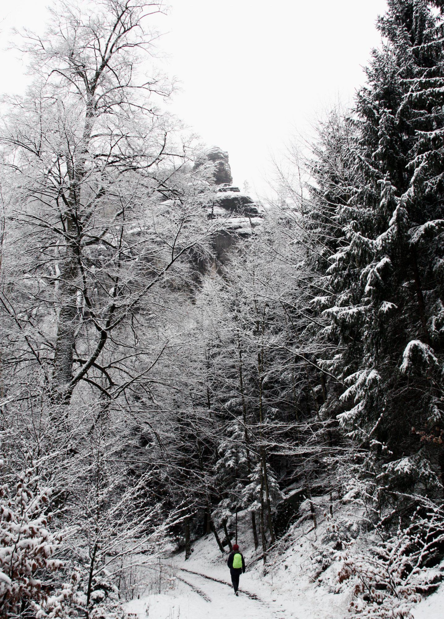 Elbsandsteingebirge, Sächsische Schweiz, Wandern, Wandertour