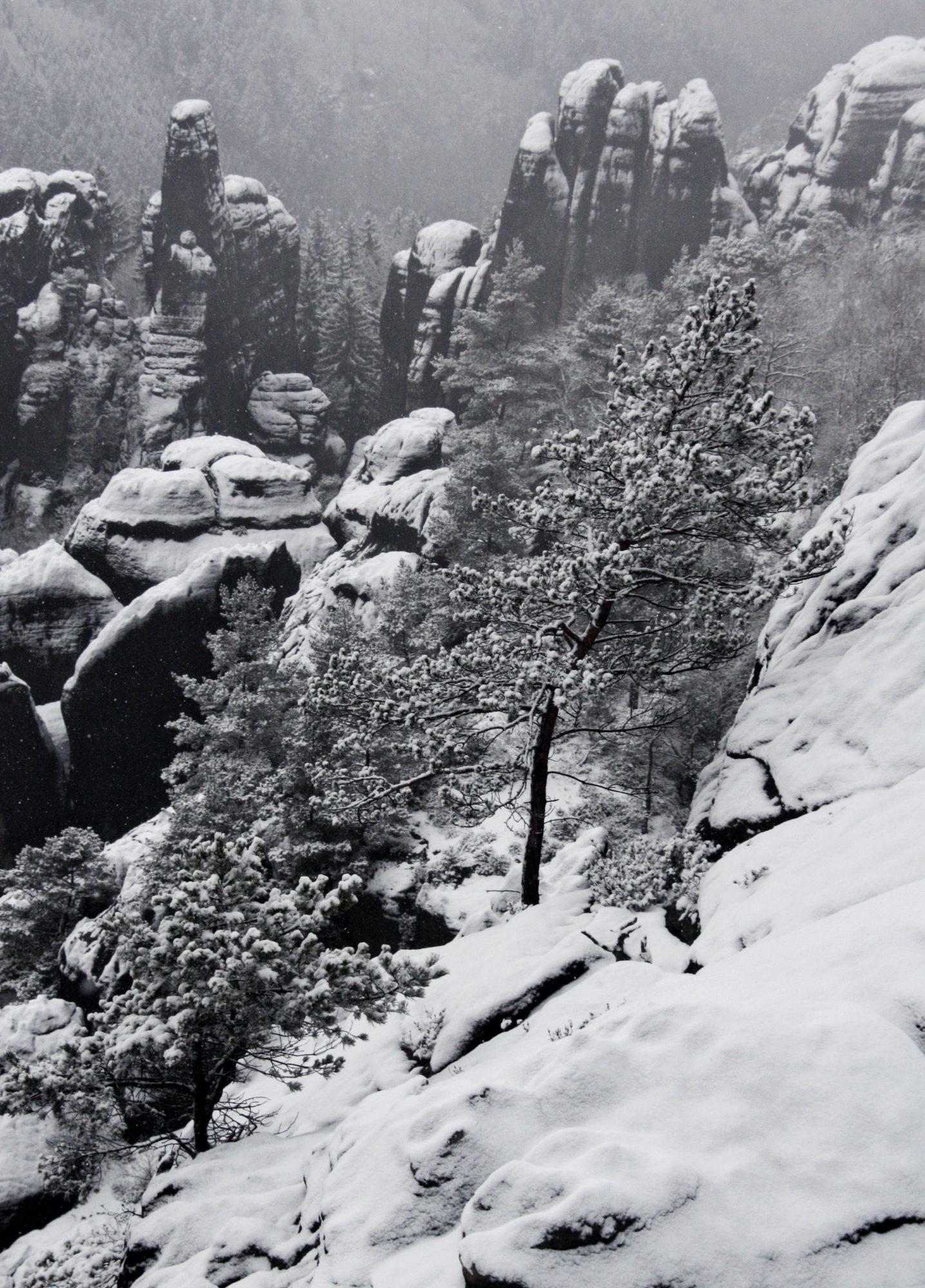 Schrammsteine, Elbsandsteingebirge, Sächsische Schweiz, Wandern, Wandertour