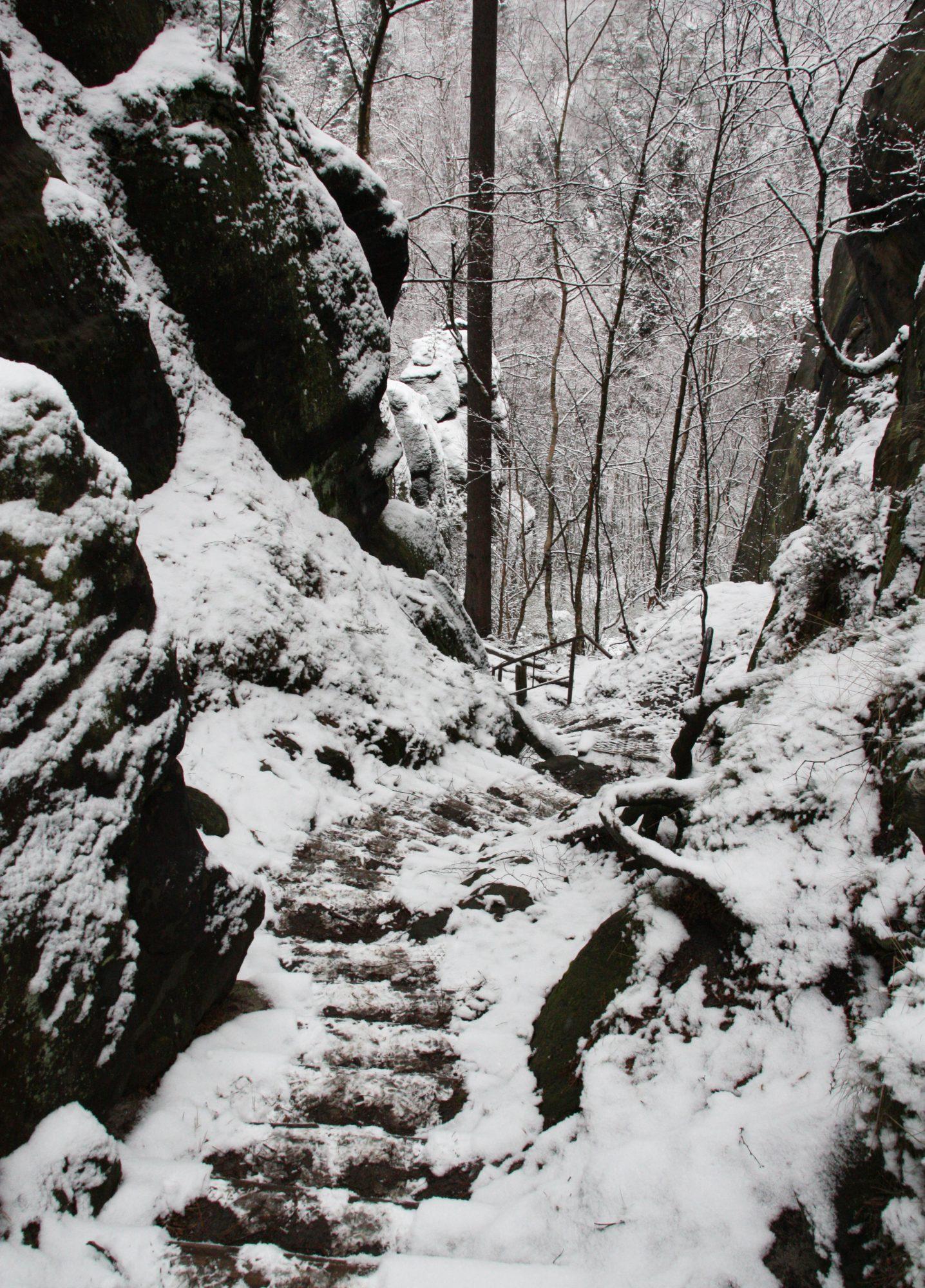 Aufstieg, Carolafelsen, Elbsandsteingebirge, Sächsische Schweiz, Wandern, Wandertour