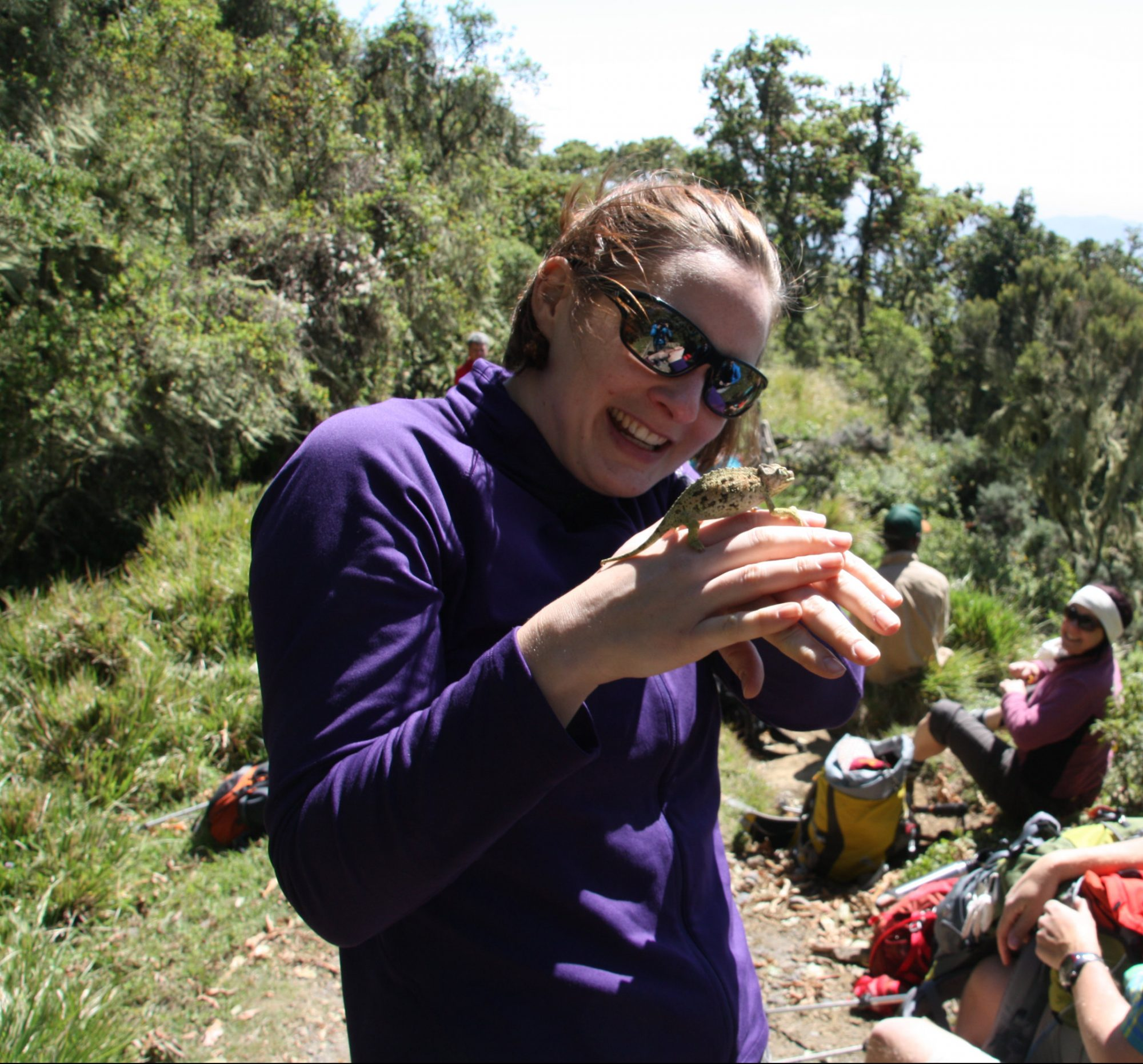 Mount Meru, Regenwald, Arusha Nationalpark, Tansania, Afrika
