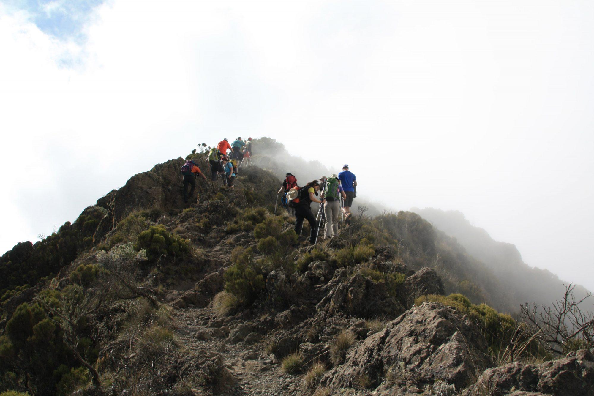 Little Meru im Nebel, Mount Meru, Regenwald, Arusha Nationalpark, Tansania, Afrika