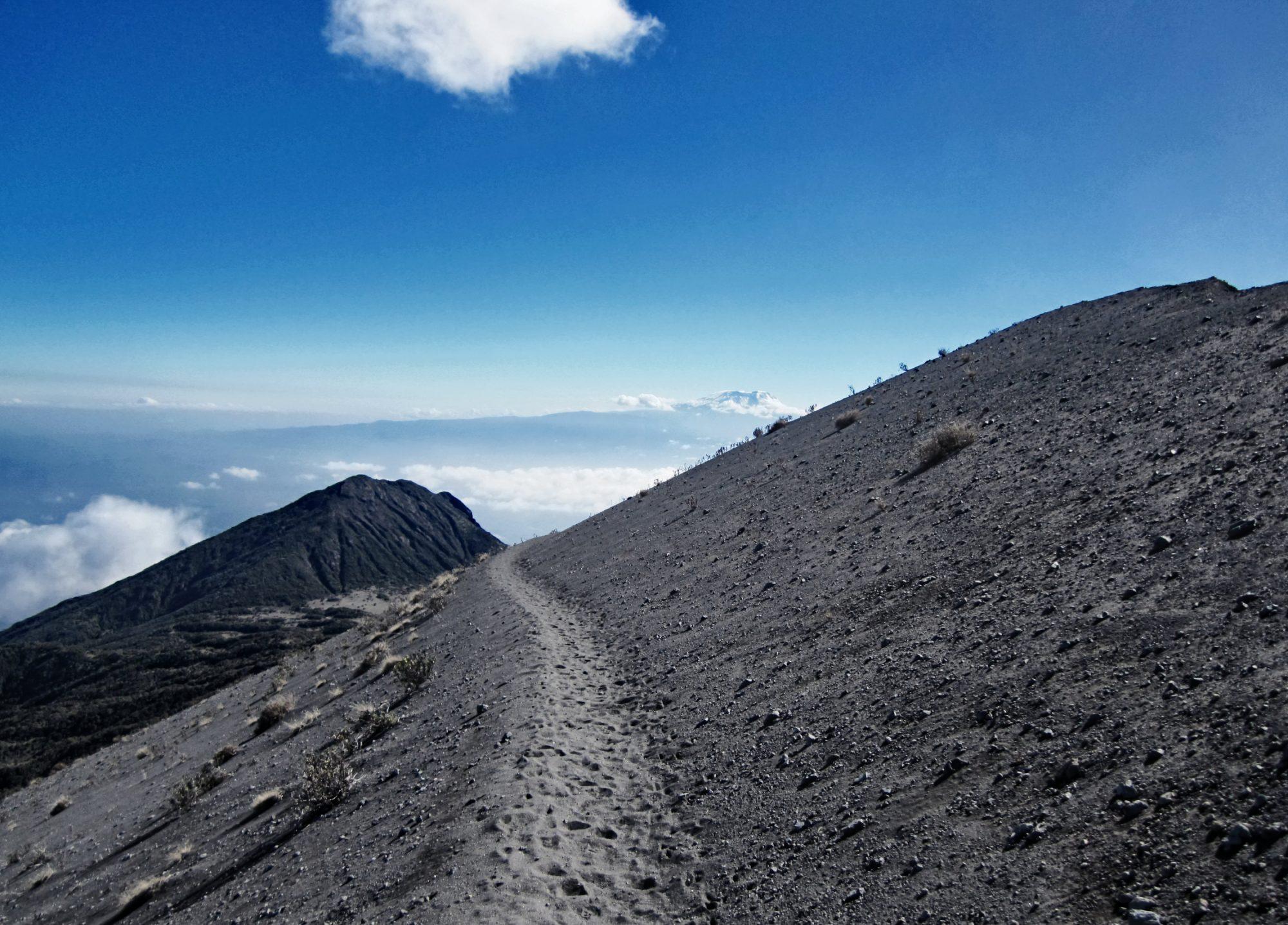 Wanderweg am Mount Meru mit Kilimandscharo Blick Mount Meru, Mount Meru Besteigung, Tour, Erfahrungsbericht, Afrika, Tansania, Bergtour