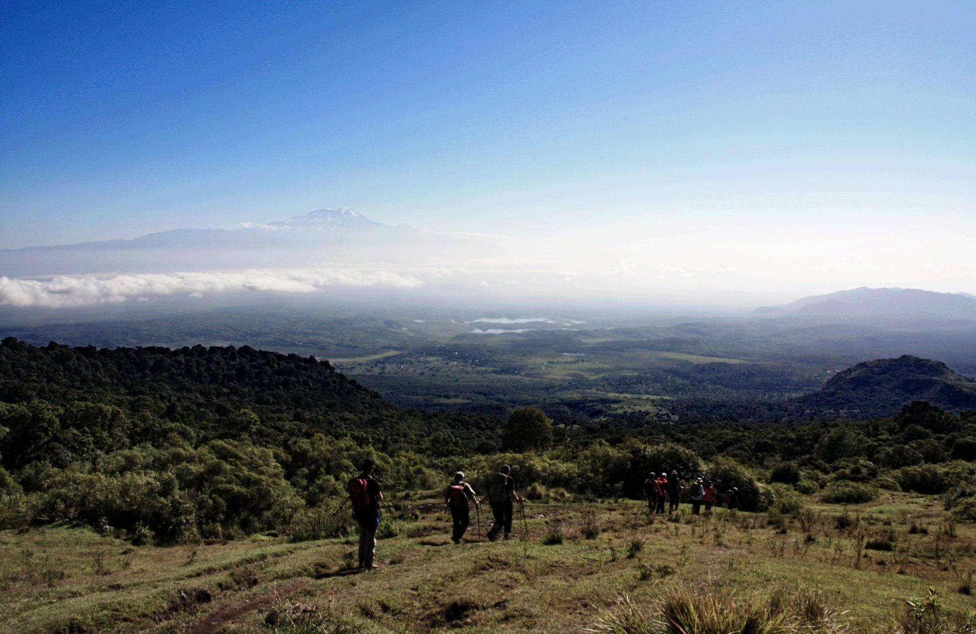 Abstieg vom Mount Meru, Mount Meru Besteigung, Tour, Erfahrungsbericht, Afrika, Tansania, Bergtour