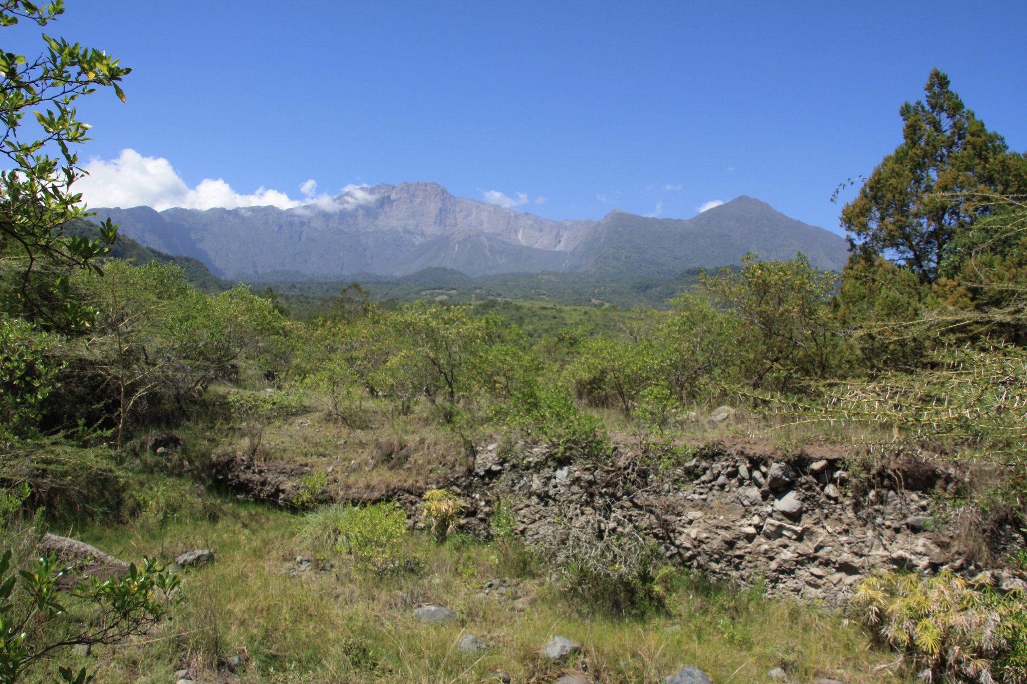 Blick zurück auf den Mount Meru, Mount Meru Besteigung, Tour, Erfahrungsbericht, Afrika, Tansania, Bergtour