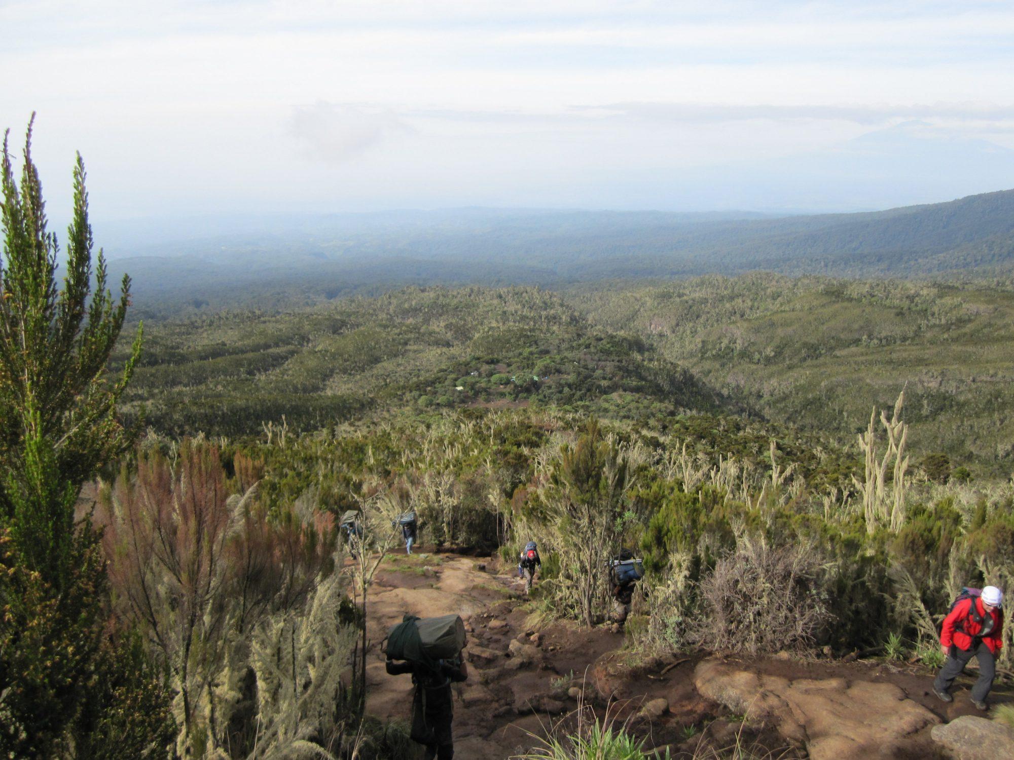 Wandern, Träger, Kilimandscharo, Kilimandscharo besteigen, Tansania, Afrika, Kilimandscharo Tour, Erfahrungsbericht, Machame Route