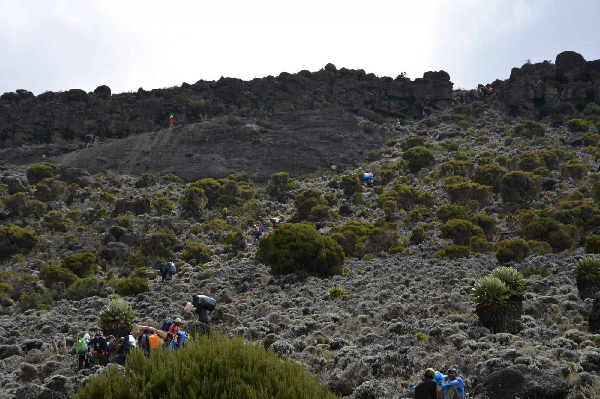 Schlucht Kilimandscharo, Kilimandscharo besteigen, Tansania, Afrika, Kilimandscharo Tour, Erfahrungsbericht, Machame Route