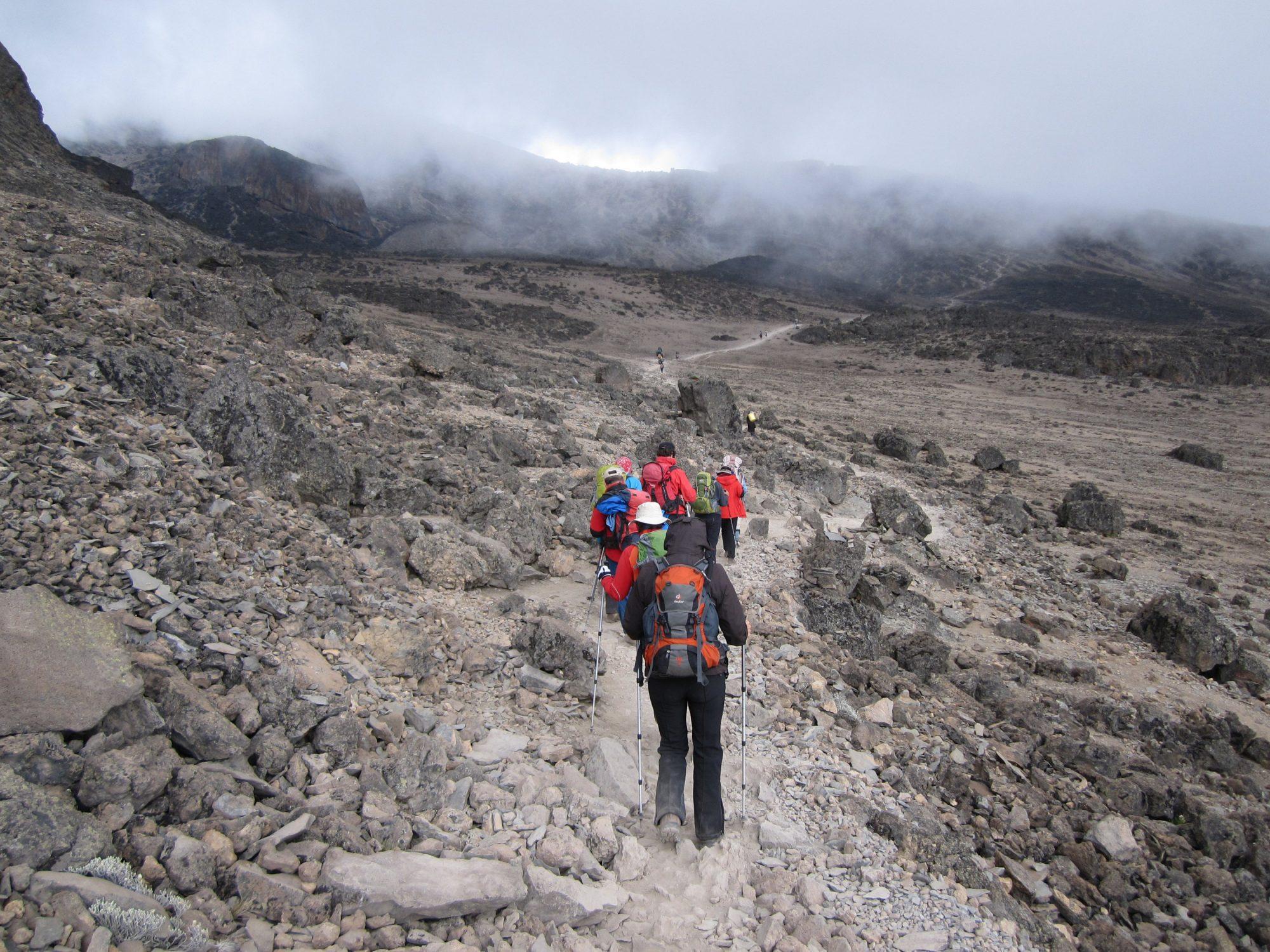 Kilimandscharo, Kilimandscharo besteigen, Tansania, Afrika, Kilimandscharo Tour, Erfahrungsbericht, Machame Route