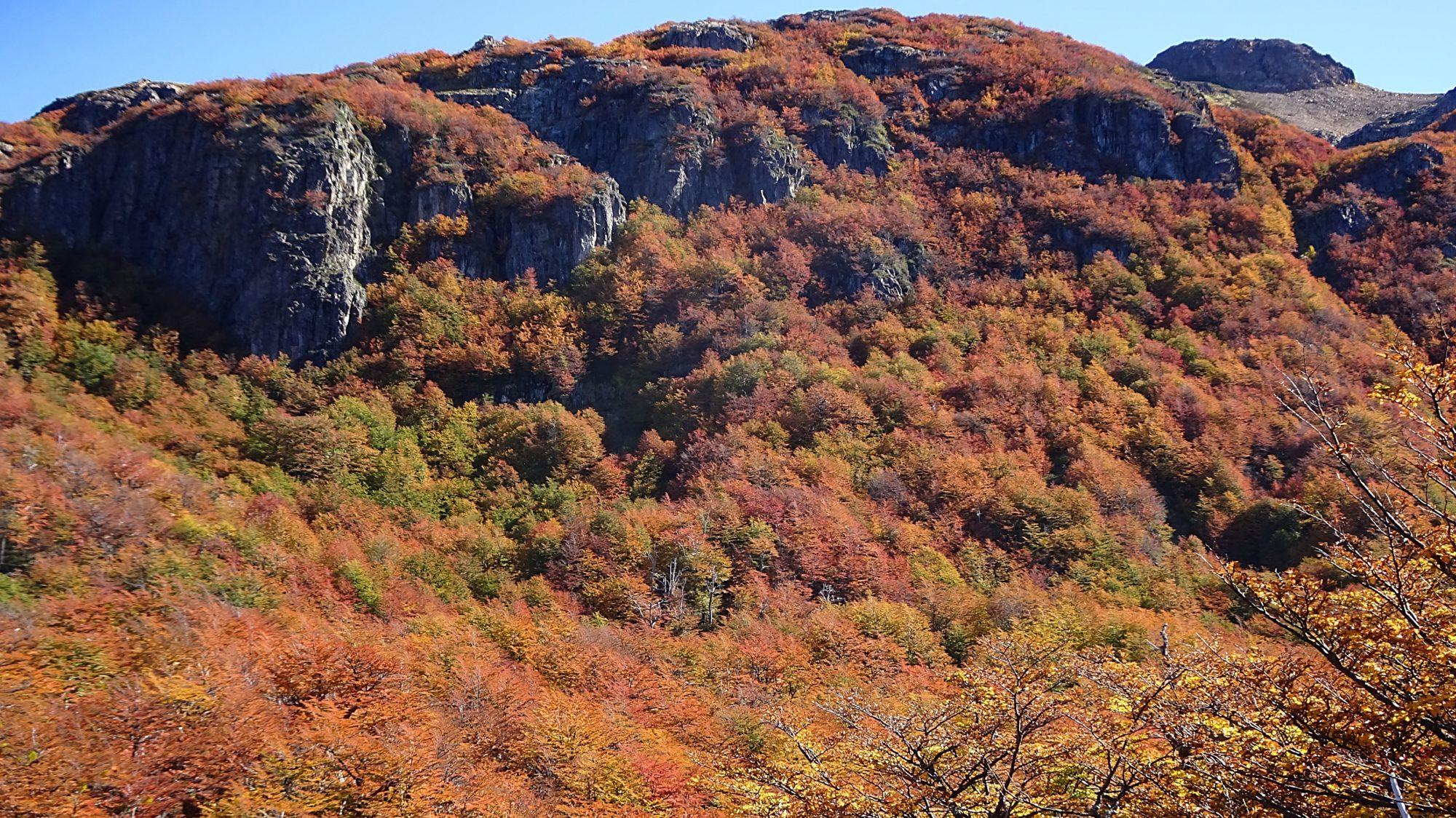 Fjella El Bolson Wanderung Patagonien Warton Dedo Gordo Encanto Blanco Wanderroute Wandern Herbstwälder Berge
