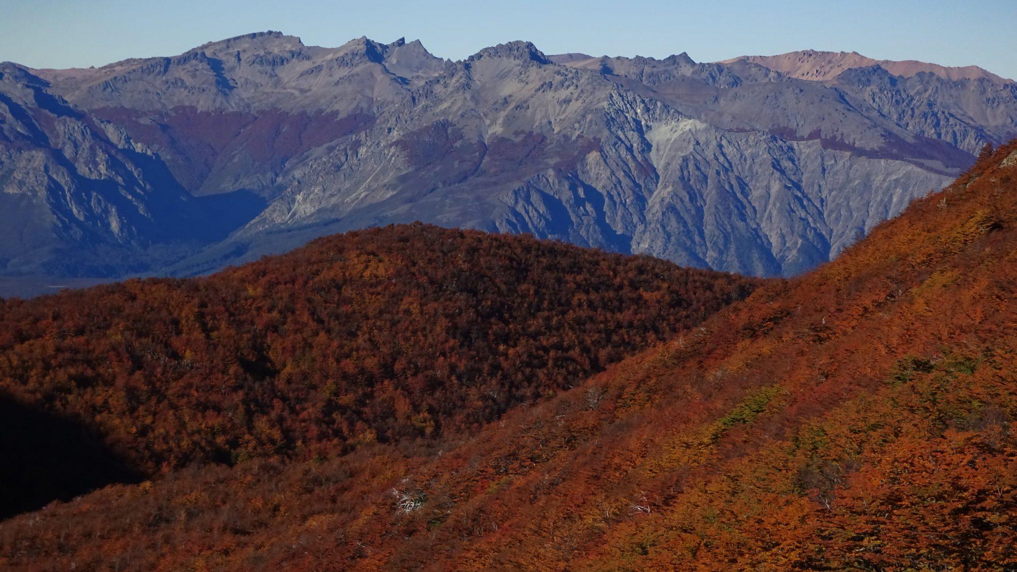 Fjella El Bolson Wanderung Patagonien Warton Dedo Gordo Encanto Blanco Wanderroute Wandern Herbst Berge