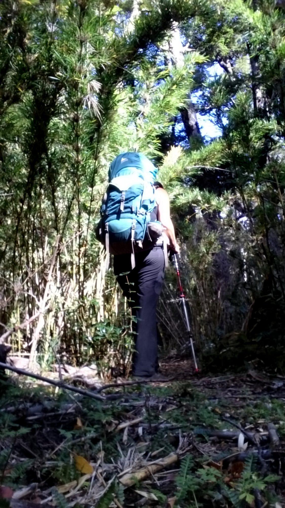 Fjella El Bolson Wanderung Patagonien Warton Dedo Gordo Encanto Blanco Wanderroute Wandern Bambus