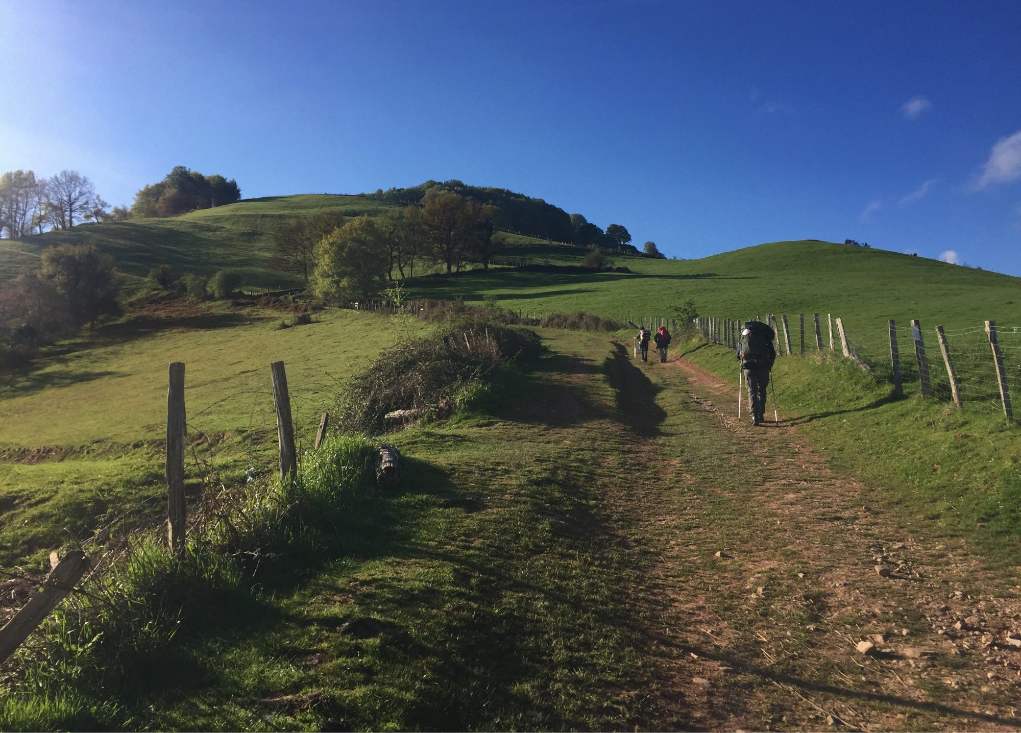 Rauf geht's auf den Ibaneta Pass, Camino Francés, Wandern, Wandertour, Pilgern, Jakobsweg, Pyrenäeen, Frankreich, Spanien