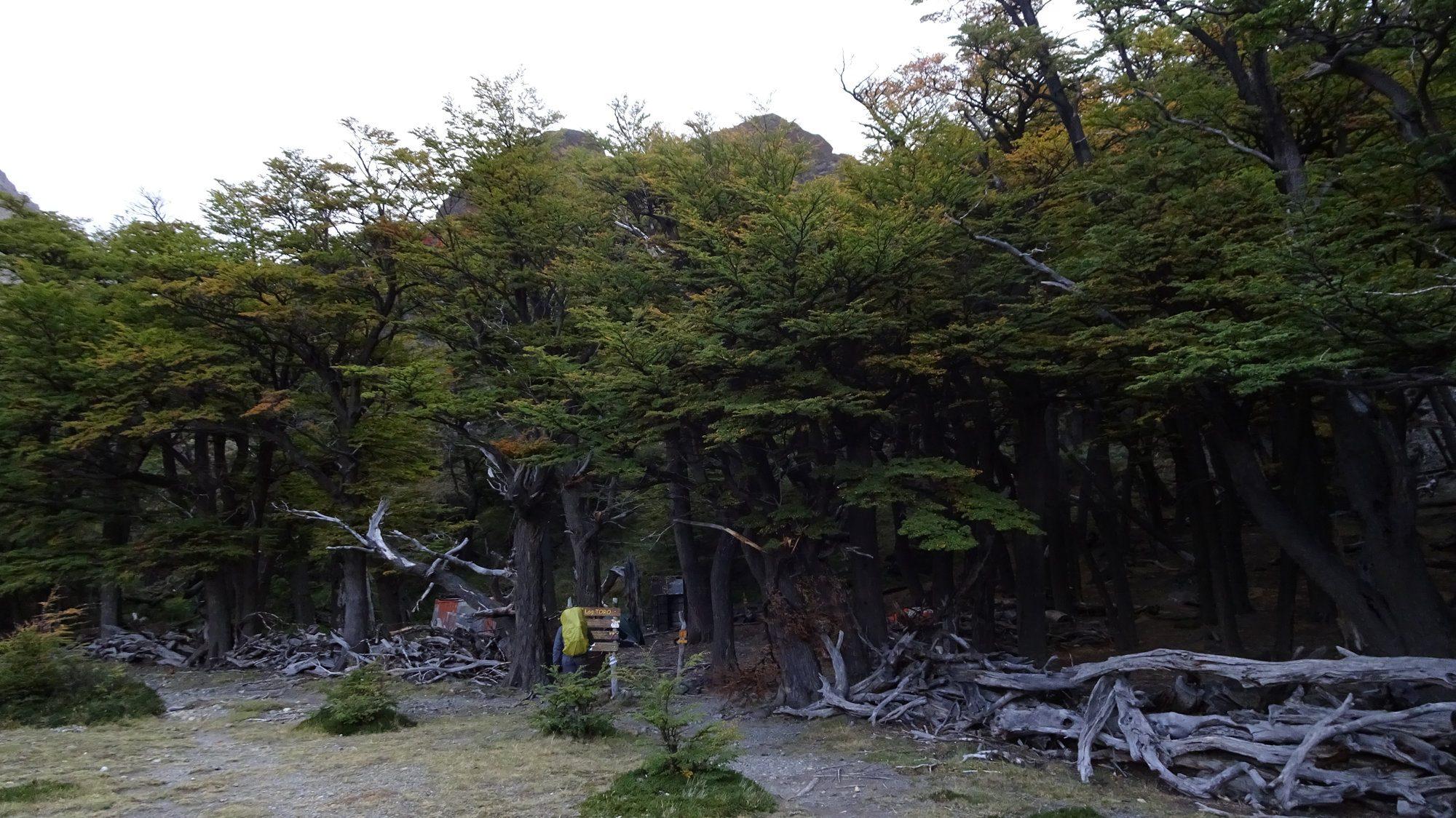 Laguna Toro Zeltplatz, Huemul Circuit, El Chaltén, Patagonien, Argentinien, Wanderung, Trekking