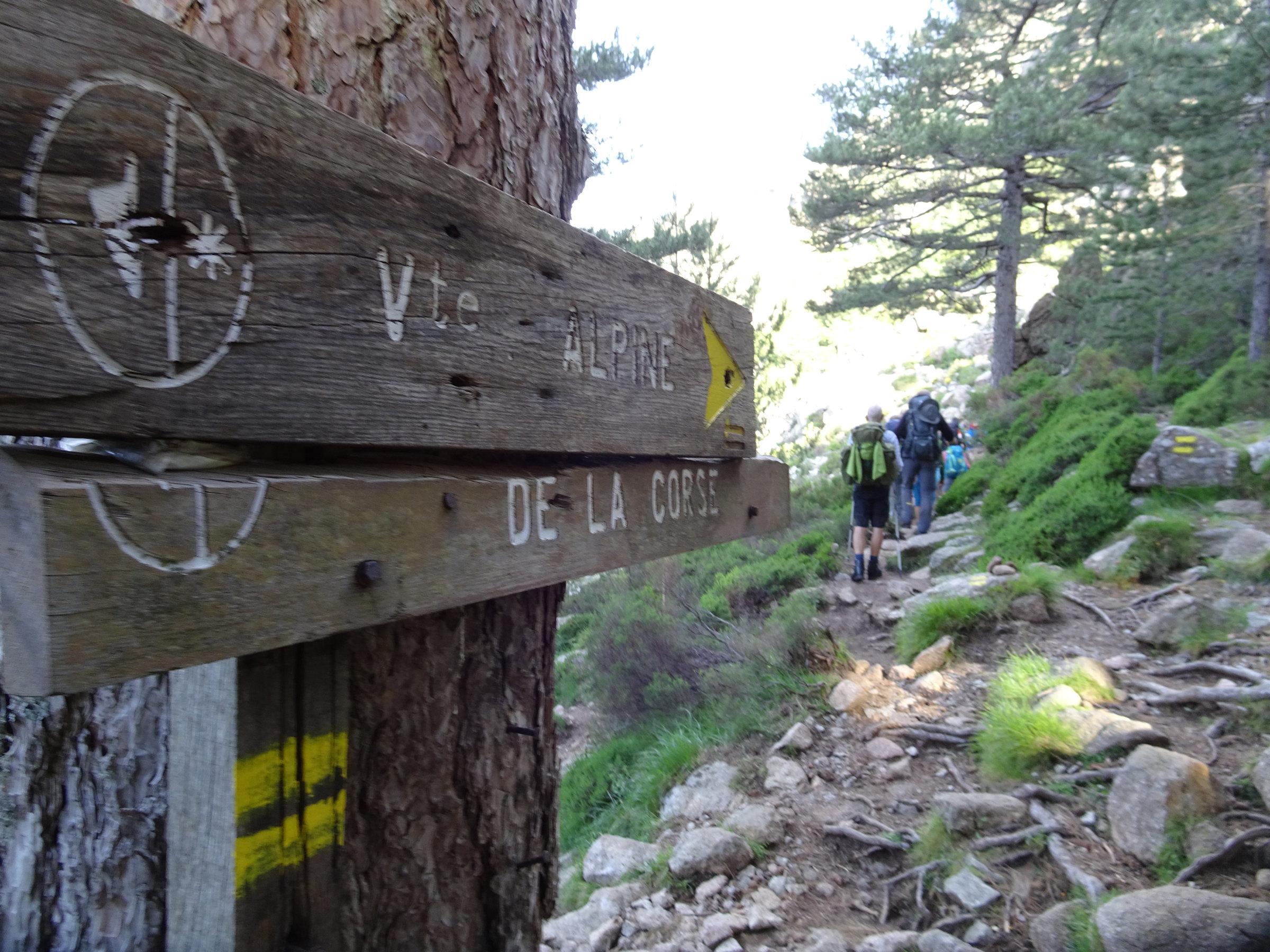 Gelb markierte alpine Alternative zum GR20, Korsika, GR20 Weitwanderweg, Wandern, Berge, Frankreich
