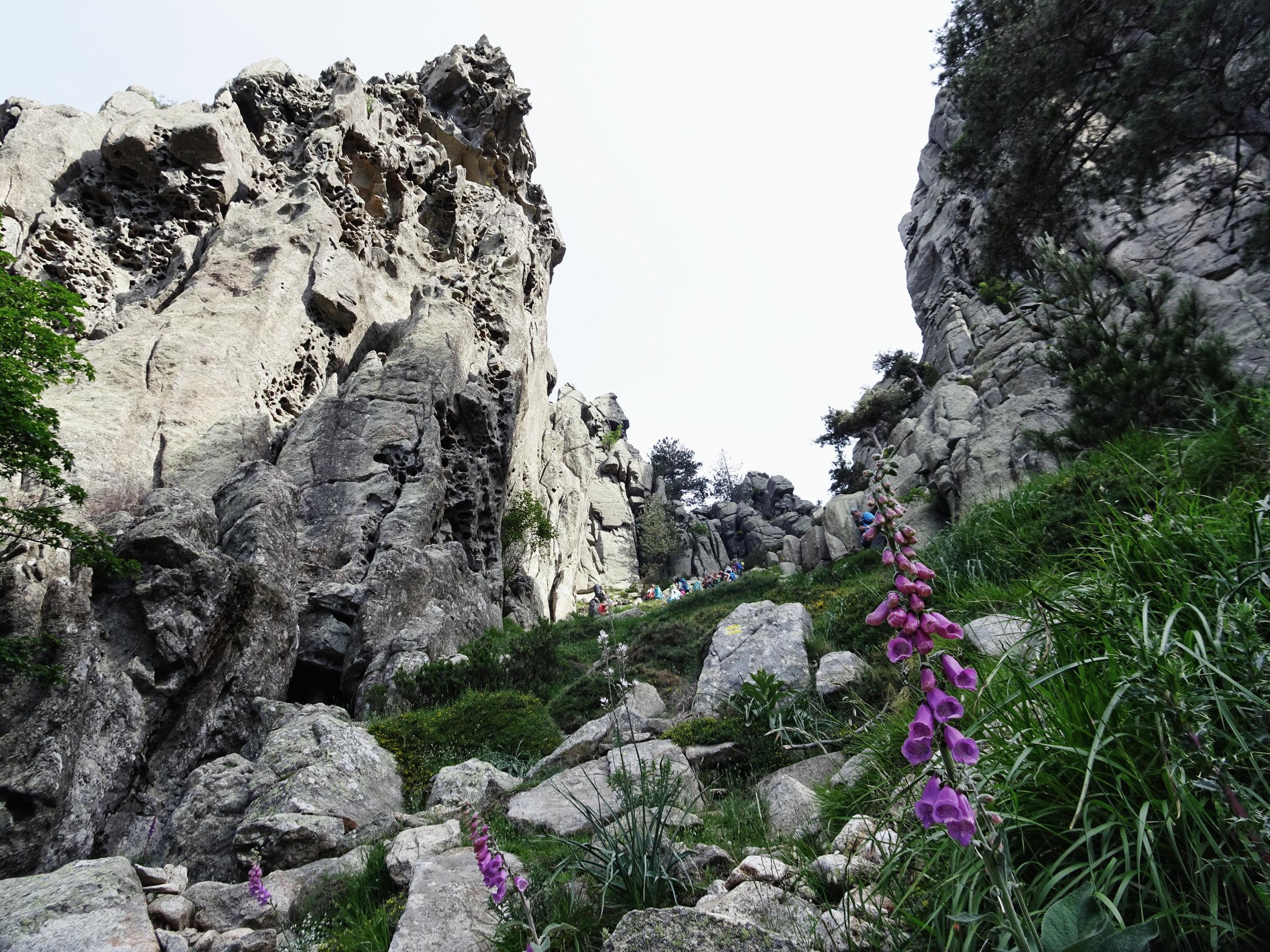 Verwitterte Felsen am GR20, Korsika, GR20 Weitwanderweg, Wandern, Berge, Frankreich