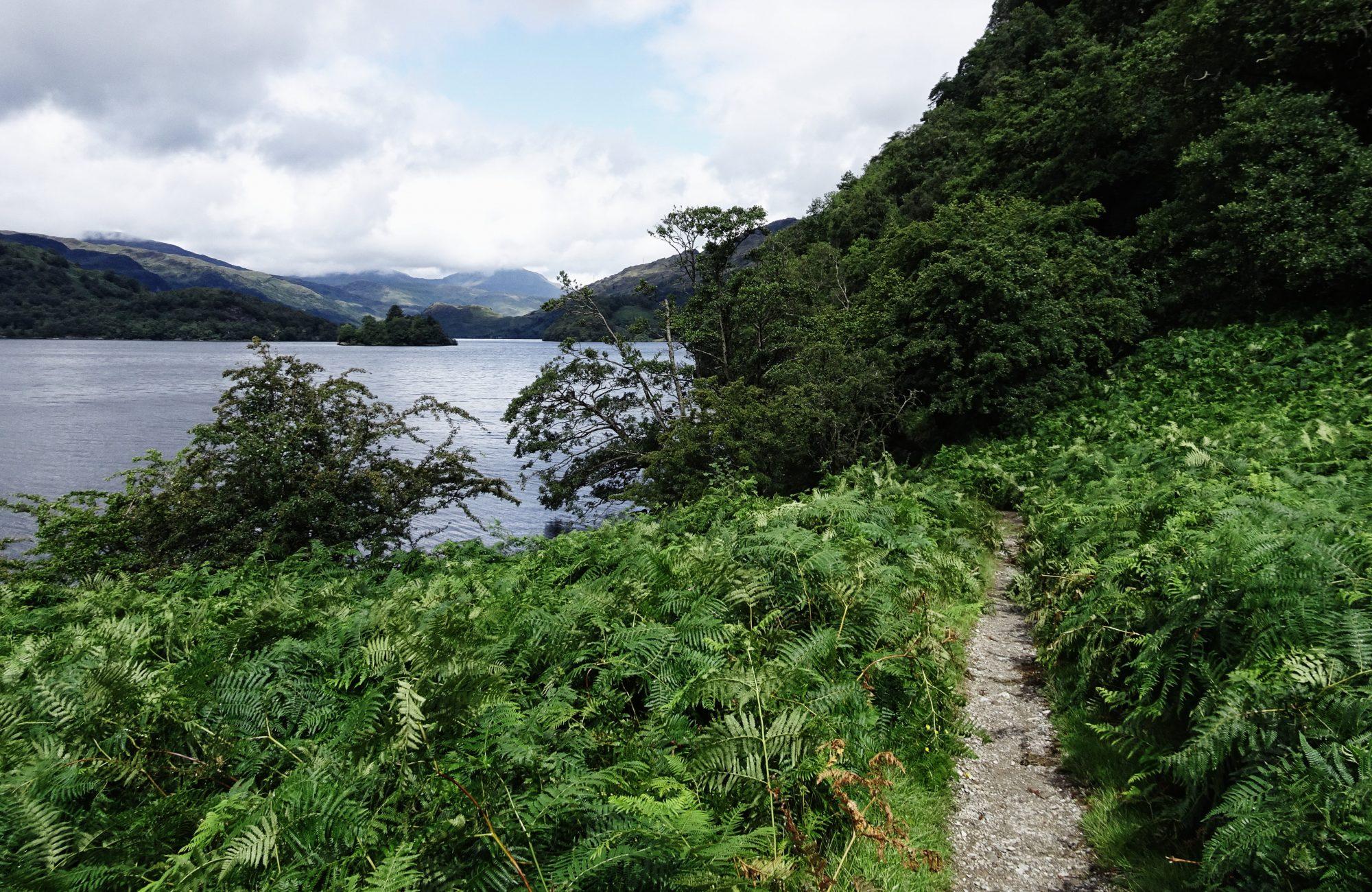 Es grünt so grün am Loch Lomond, West Highland Way, Schottland, Wanderung, Weitwandern, Trekking, Highlands