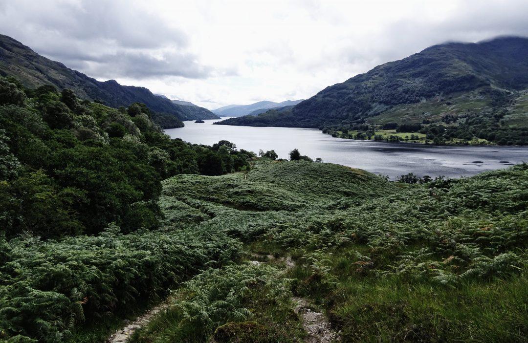 Einer der schönsten Blicke auf den Loch Lomond vom West Highland Way, West Highland Way, Schottland, Wanderung, Weitwandern, Trekking, Highlands