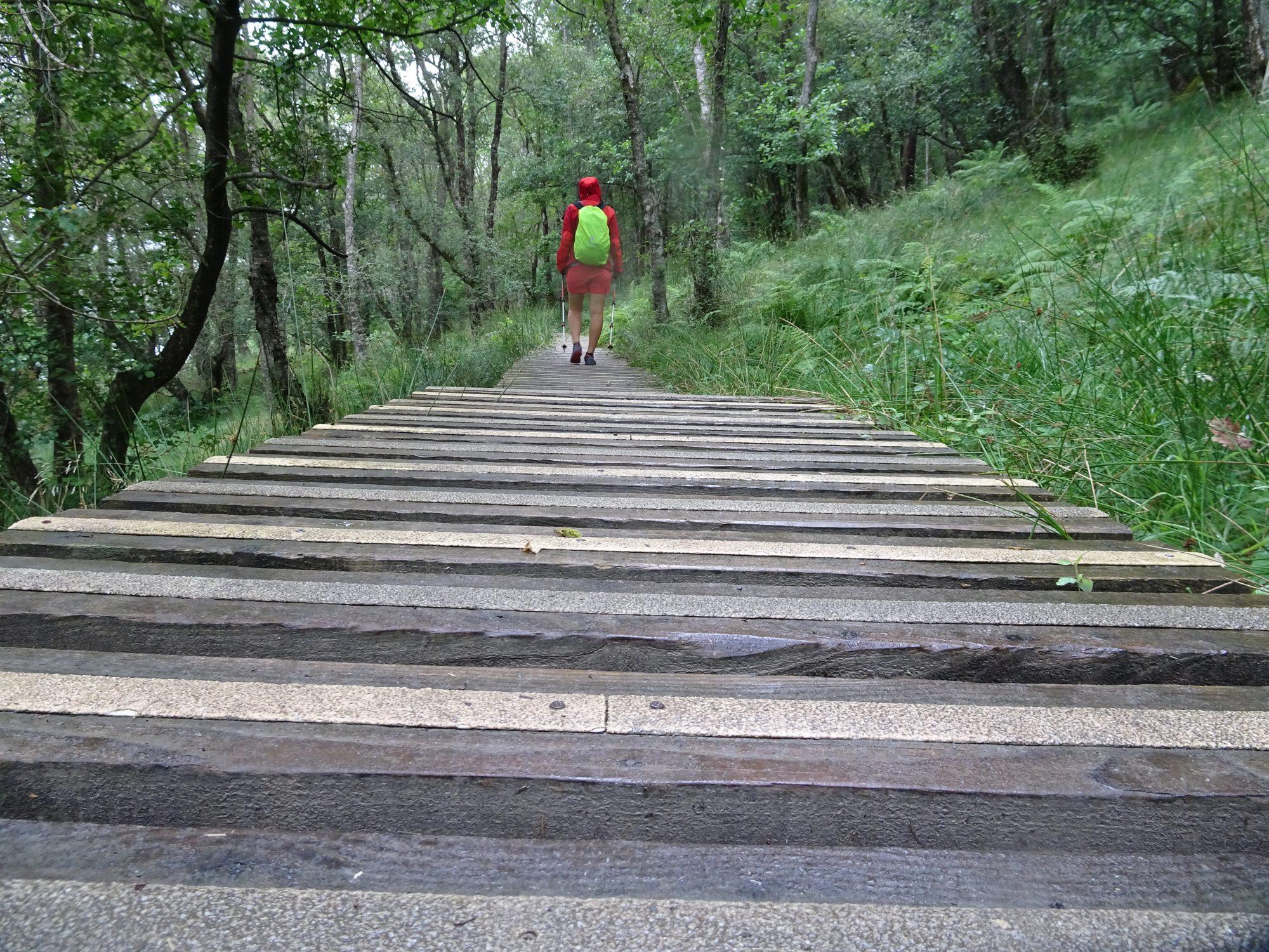 Stellenweises Komfortwandern auf Planken, West Highland Way, Schottland, Wanderung, Weitwandern, Trekking, Highlands