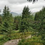 West Highland Way, Schottland, Wanderung, Weitwandern, Trekking, Highlands