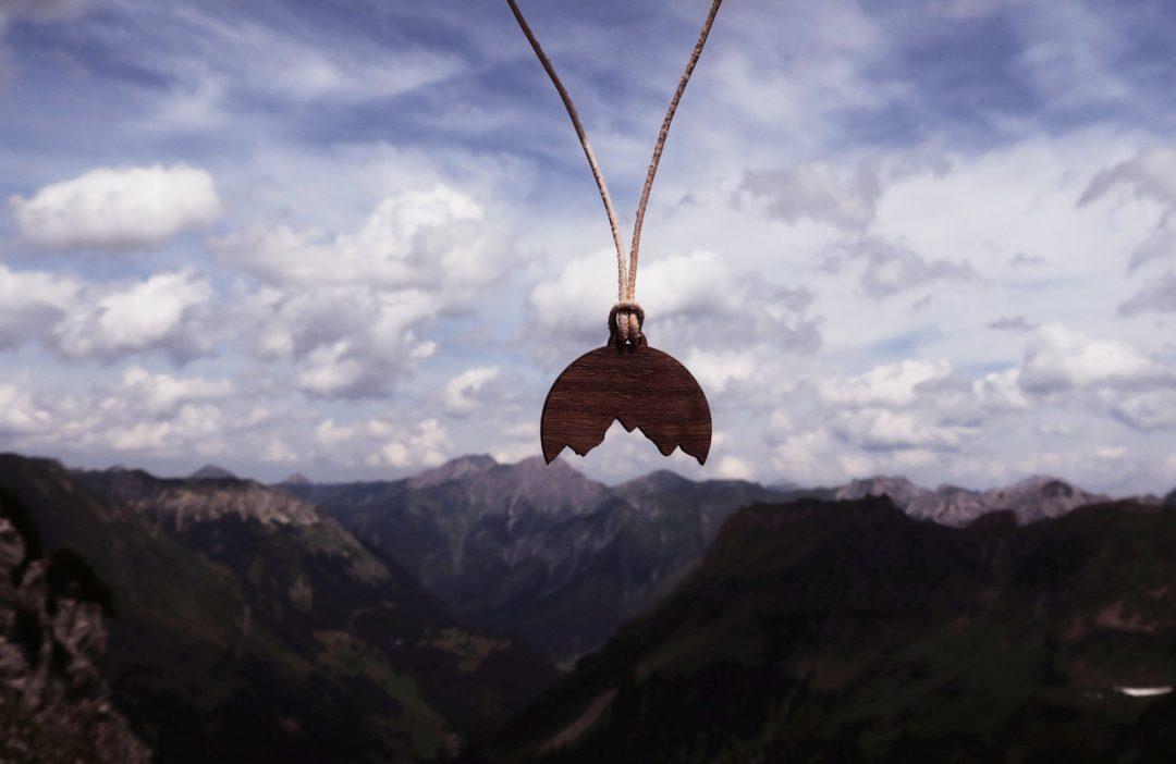 Alpenspiegelung Holzkette Allgäu