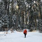 Vogtland Felsenweg Winterwandern (14)