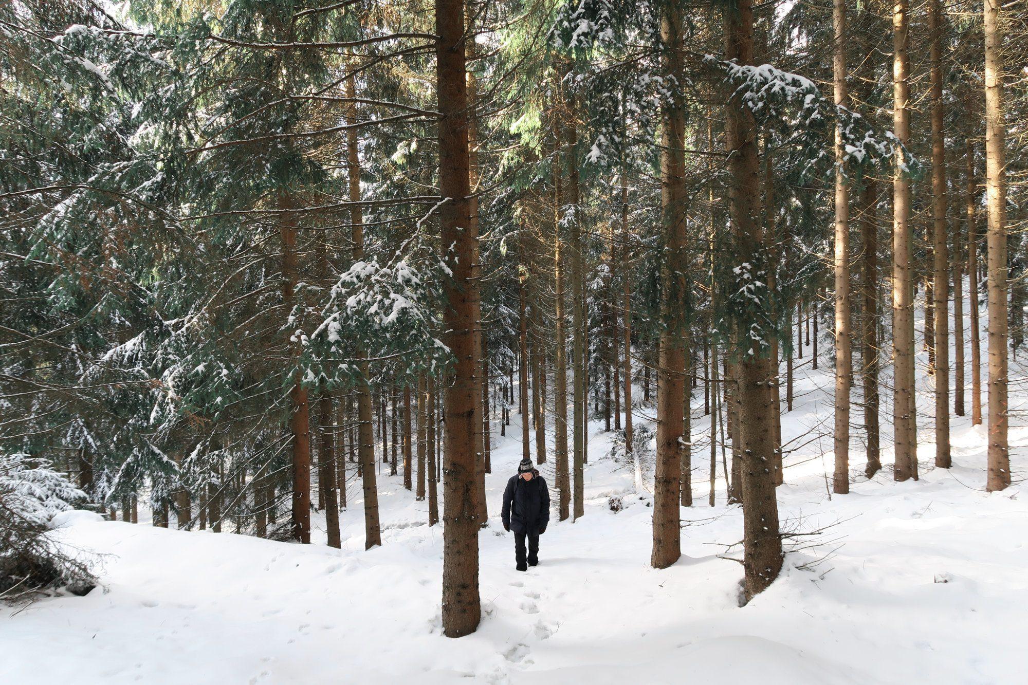 Wandern durch tiefverschneite Wälder. Winterwandern im Vogtland, Felsenweg, Grünbach