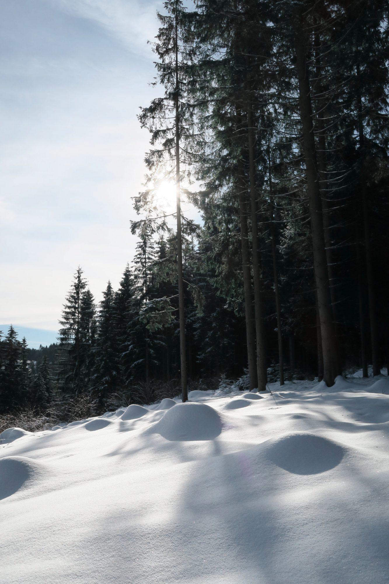 Märchenland auf dem Felsenweg im Winter. Winterwandern im Vogtland, Felsenweg, Grünbach