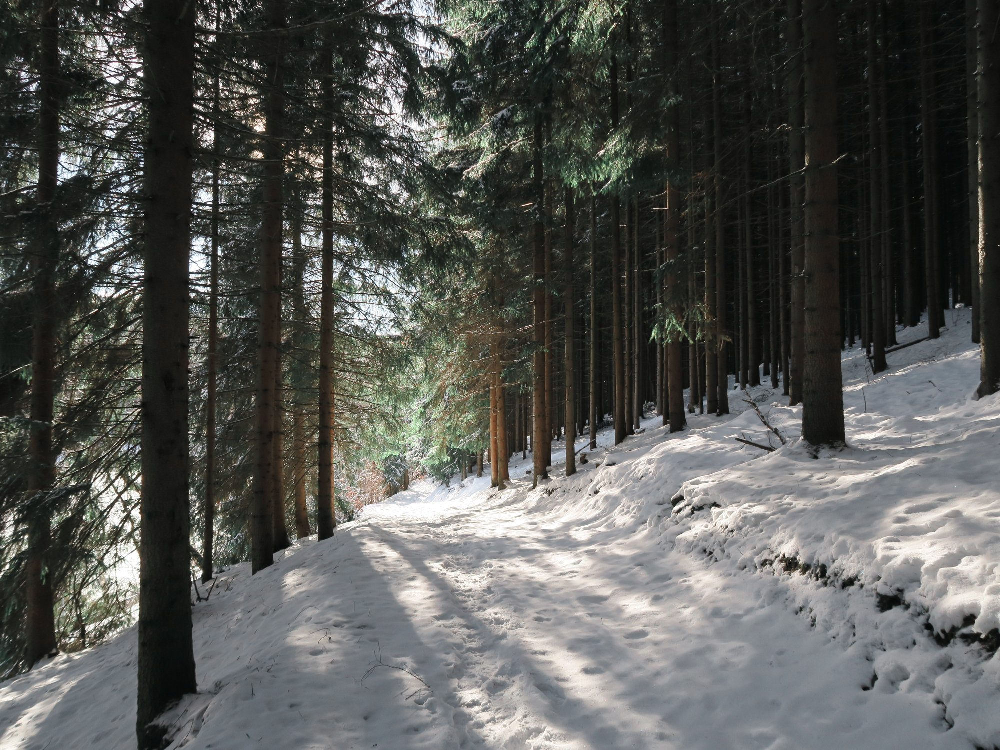 Winterwandern im Vogtland, Felsenweg, Grünbach