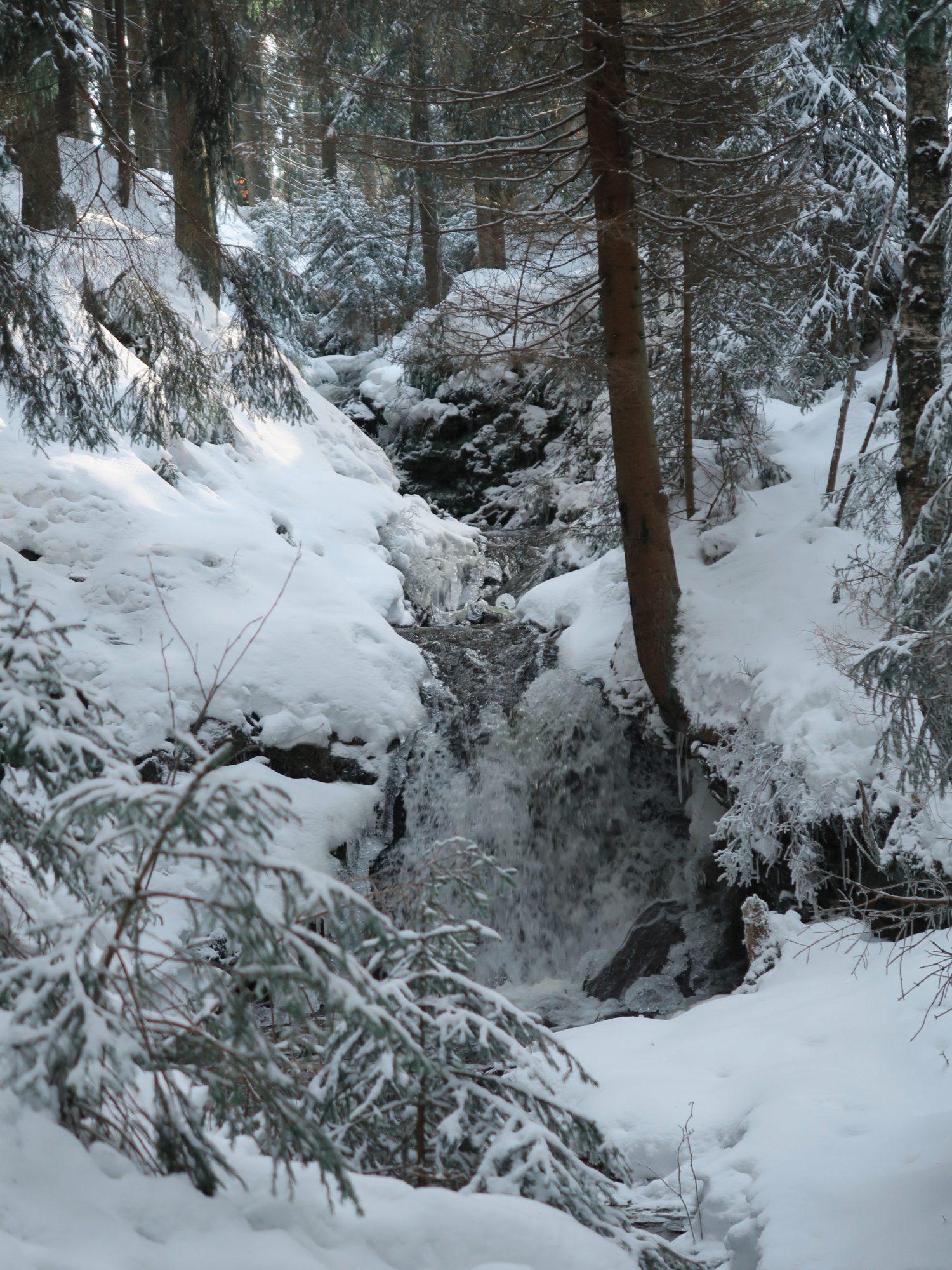 Rißbachfälle, Winterwandern im Vogtland, Felsenweg, Grünbach;