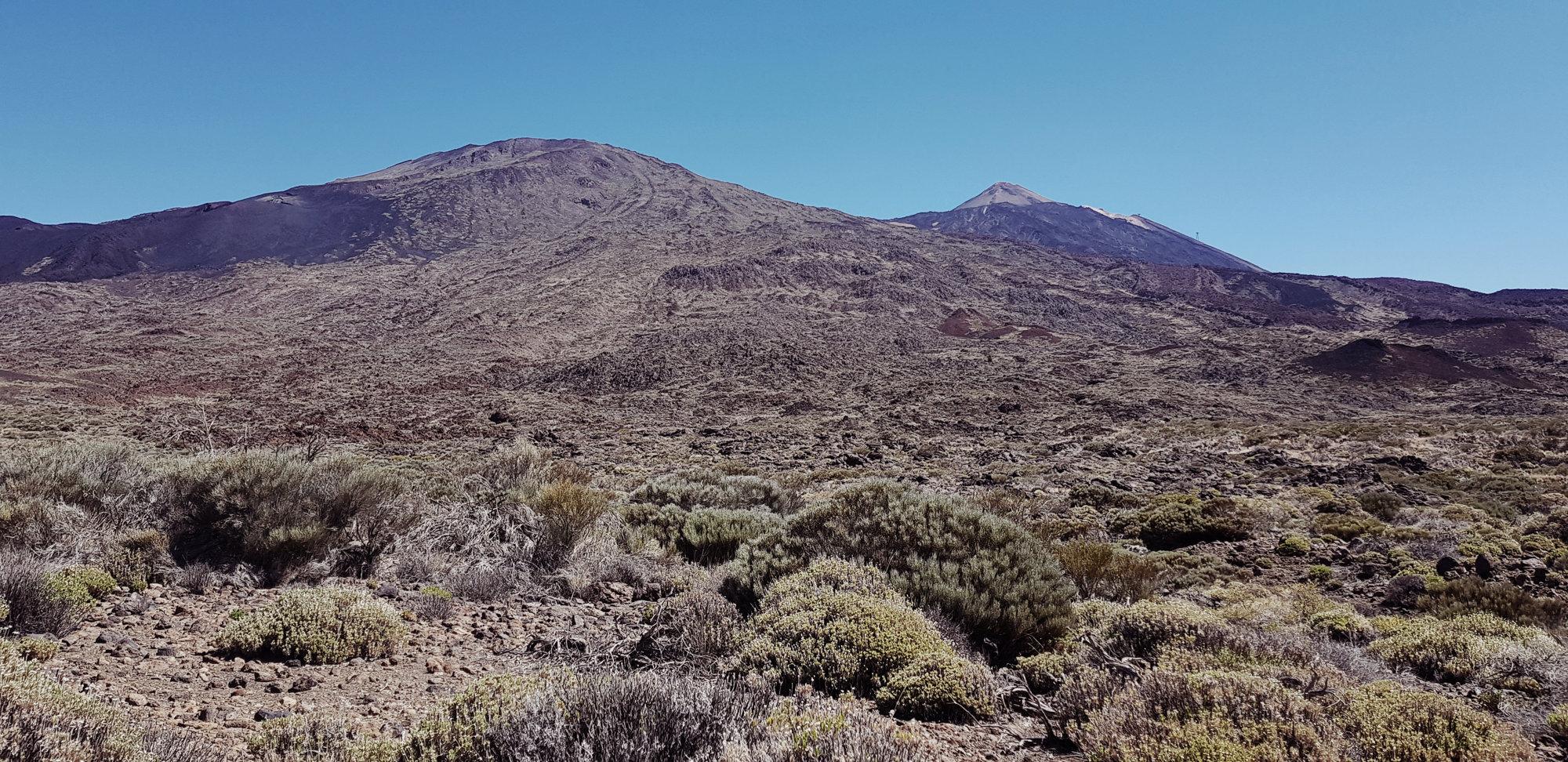 Blick auf den Pico Viejo und Pico del Teide