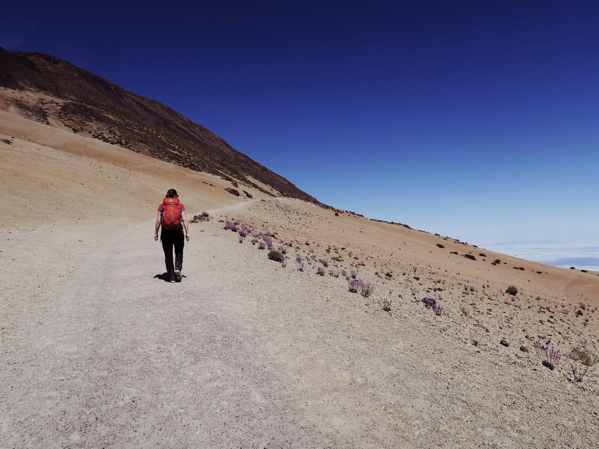 Wanderung durch helles Bimsgestein auf dem Weg zum Refugio Altavista