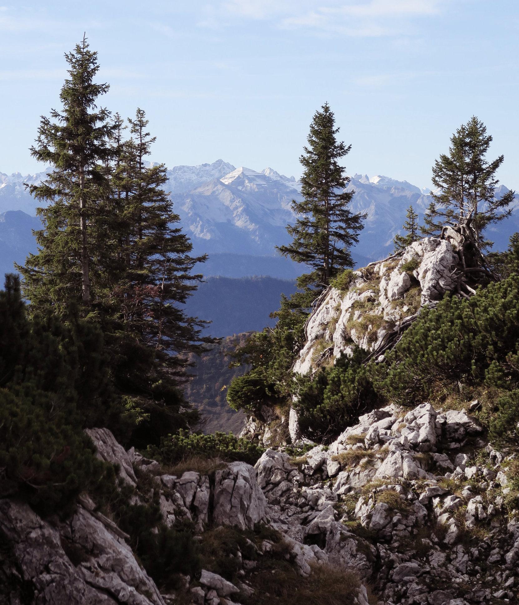 Tolle Wanderpfade im Herbst auf der Benediktenwand