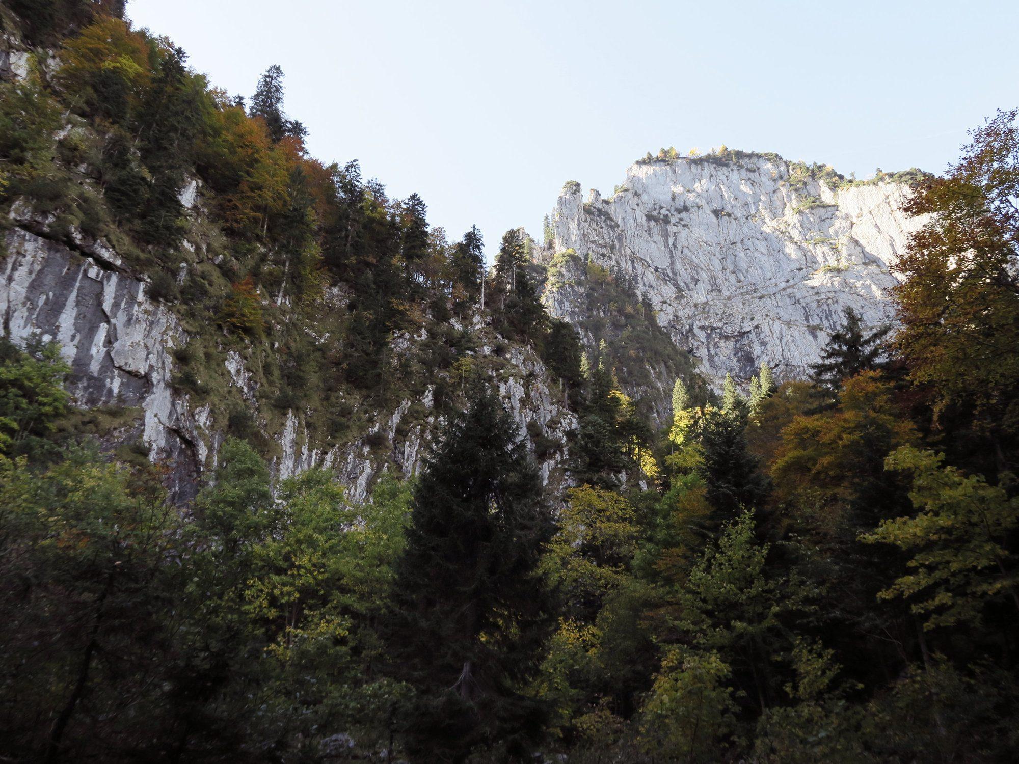 Blick zurück auf die Probstwand mit herbstlichen Bäumen