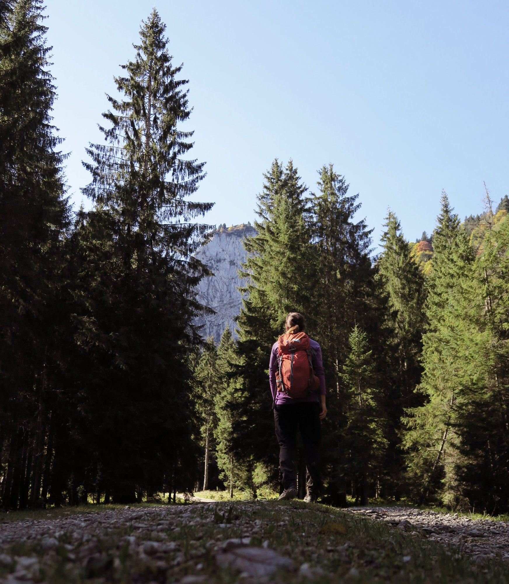 Forstweg im Längental