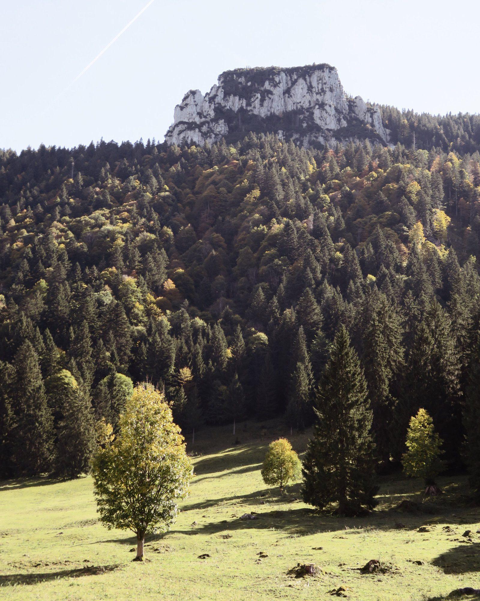 Bergidylle im Herbst